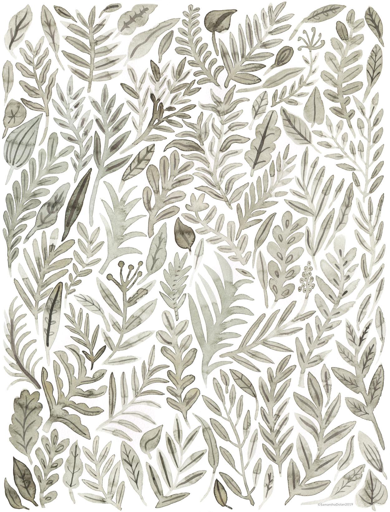 Grey Botanicals