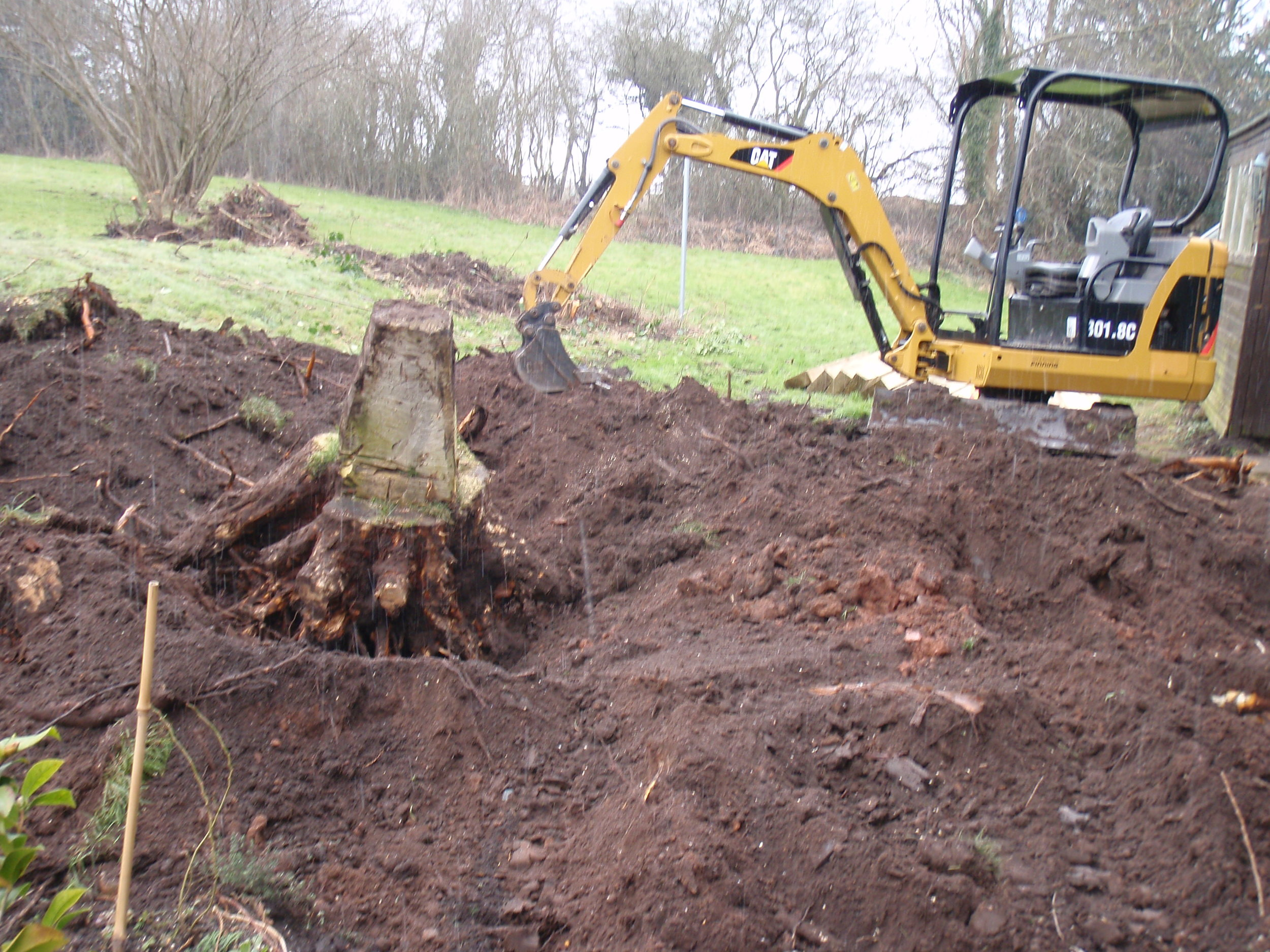 Stump removal - Belbroughton, Worcestershire