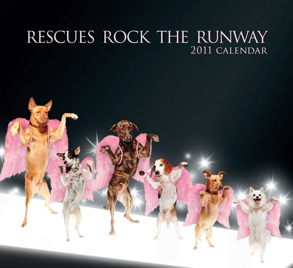 One year later,we published a charitable calendar on Amazon which sold out and raised more funds for our rescues.