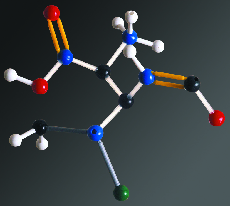 Construct an edible molecule? - (Chemical engineering)