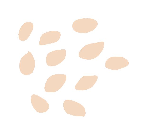 BC - Illustration 2.PNG