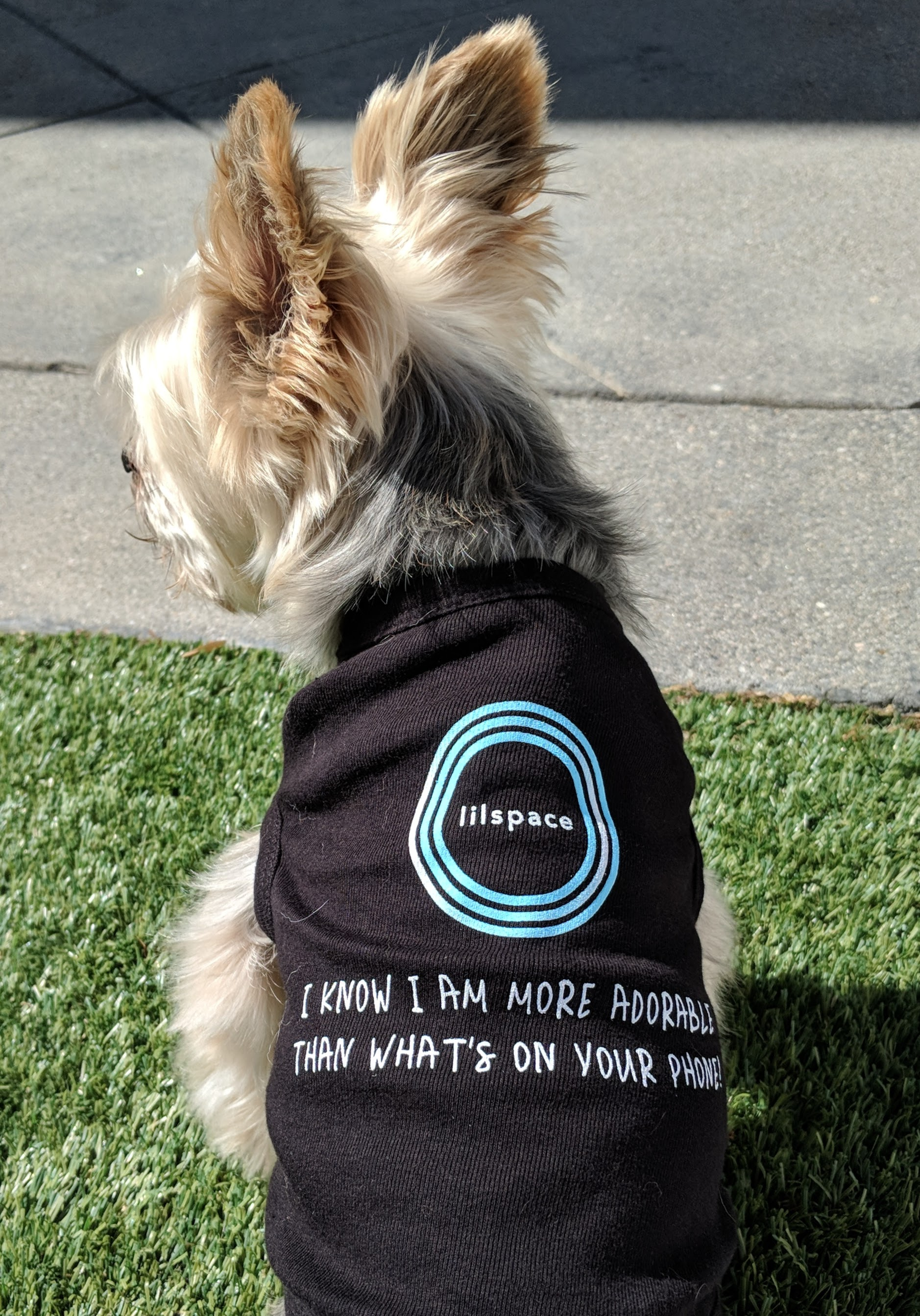 DOG TIME - Your four-legged best friend loves your full attention. UNPLUG FOR 1 HOUR AND GET A FREE LILSPACE DOG SHIRT THAT SAYS
