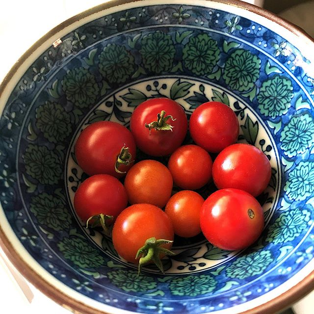 Fresh from the garden. 🌱🍅 _______________ #farmtotable #grateful #herbgarden #tomatopicking #foodthatheals #backyardfarmer #veggiegarden #thebiteshot #foodphotography #bossgirlbloggers #huffposttaste #wholefoods #organic #plantbased #growyourown #hereyouarehome #glutenfree #paleo #dairyfree #grainfree #lavender #tomato #houstonblogger #houstoneats #sofresh