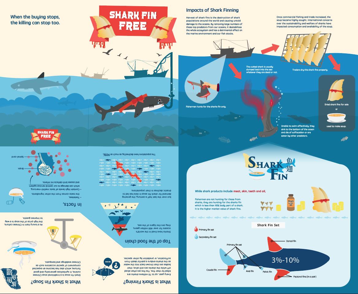 SharkFin02.png