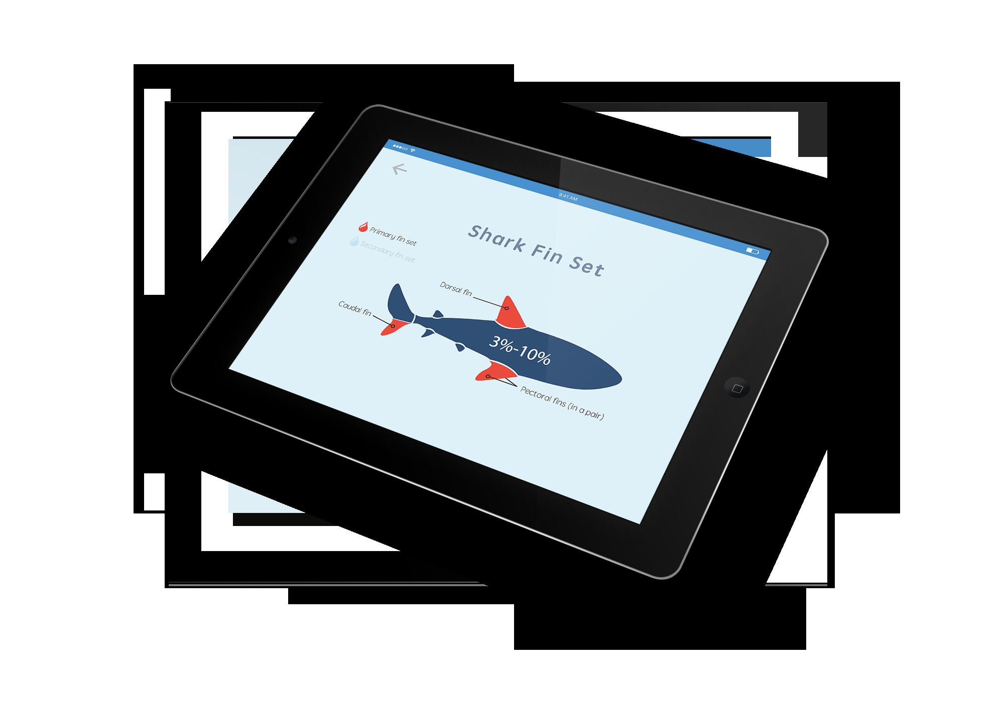 iPad-Mockup-02.png