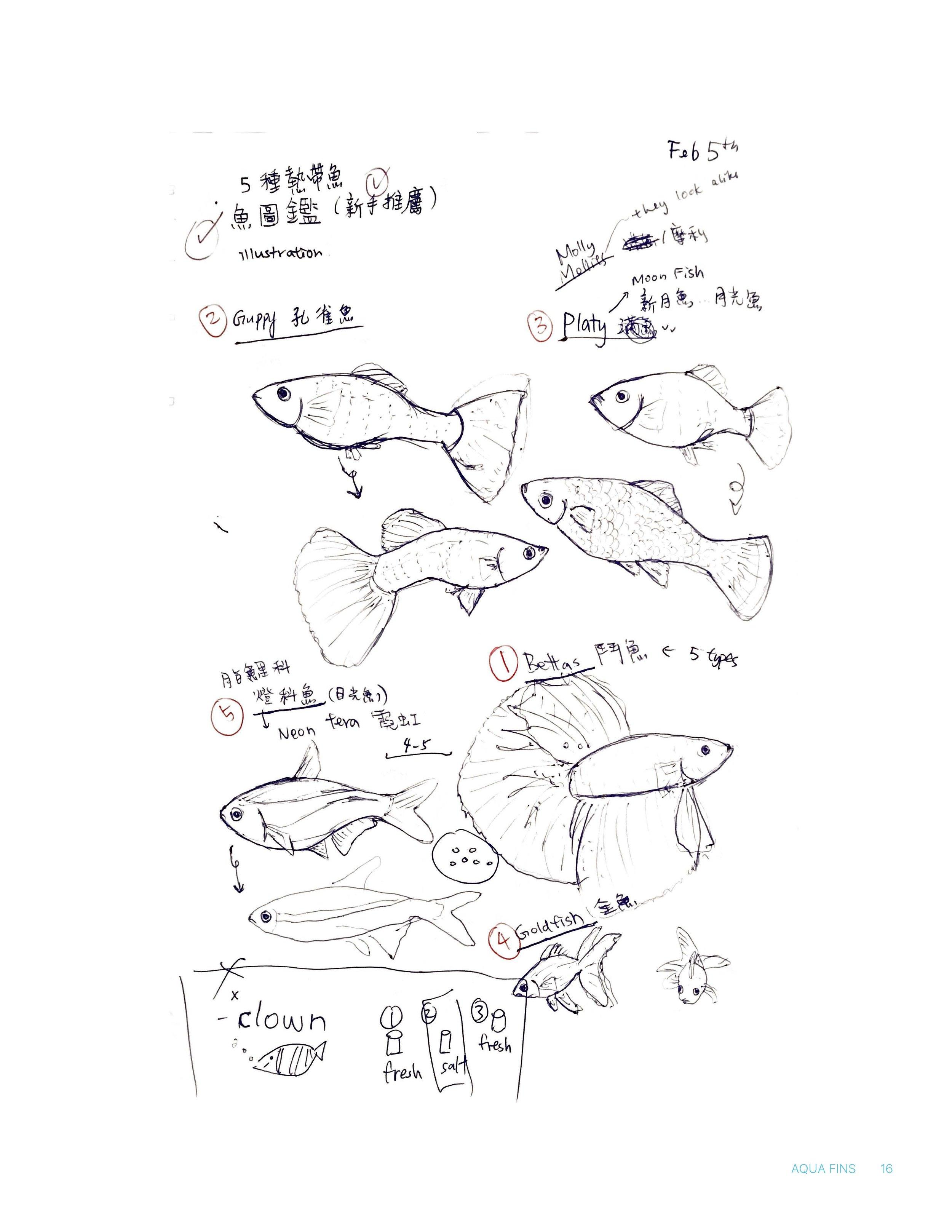 4010_Project 2_Fish_process_2_Page_16.jpg