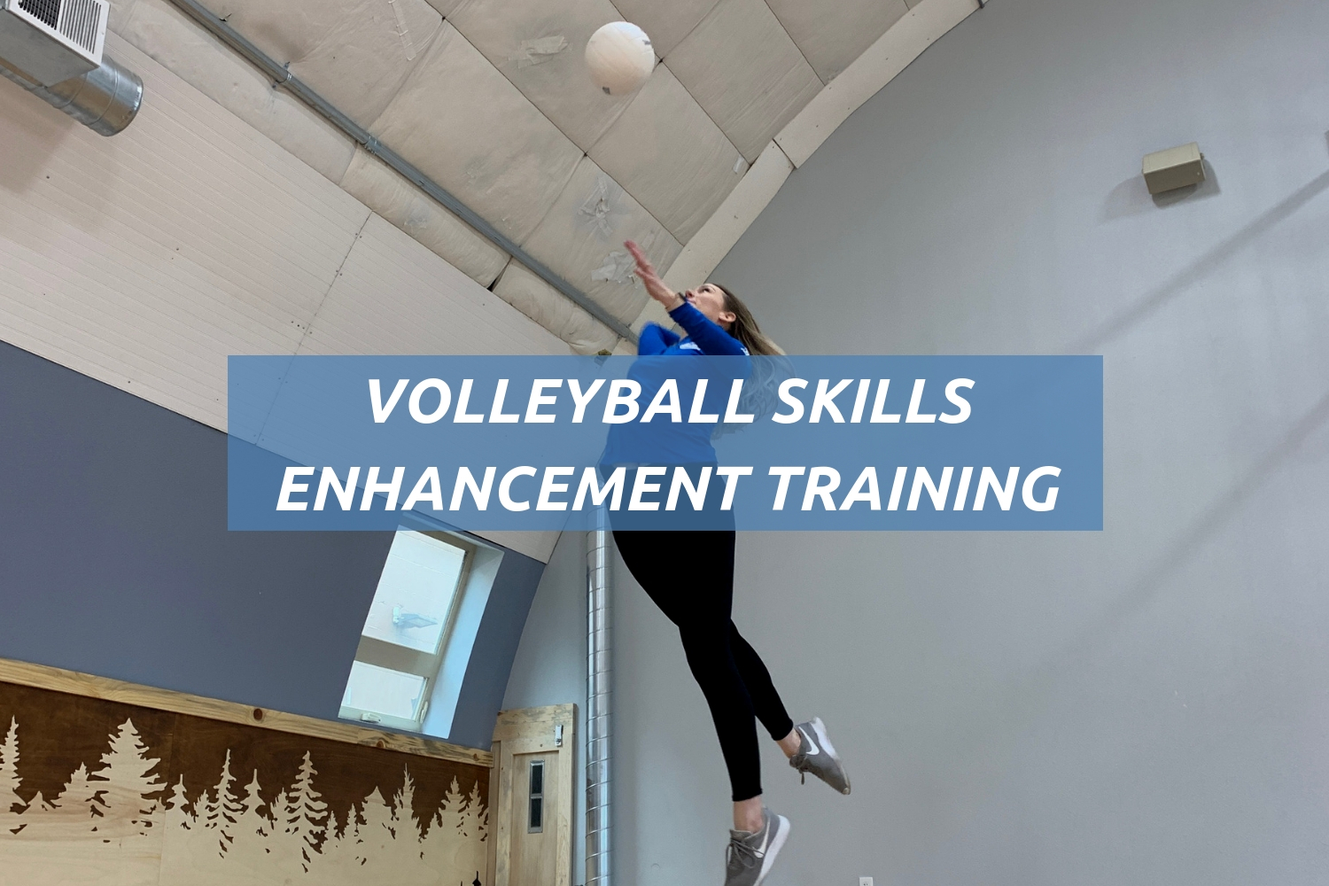 VOLLEYBALL - PTAP Website Home- Services graphics.jpg