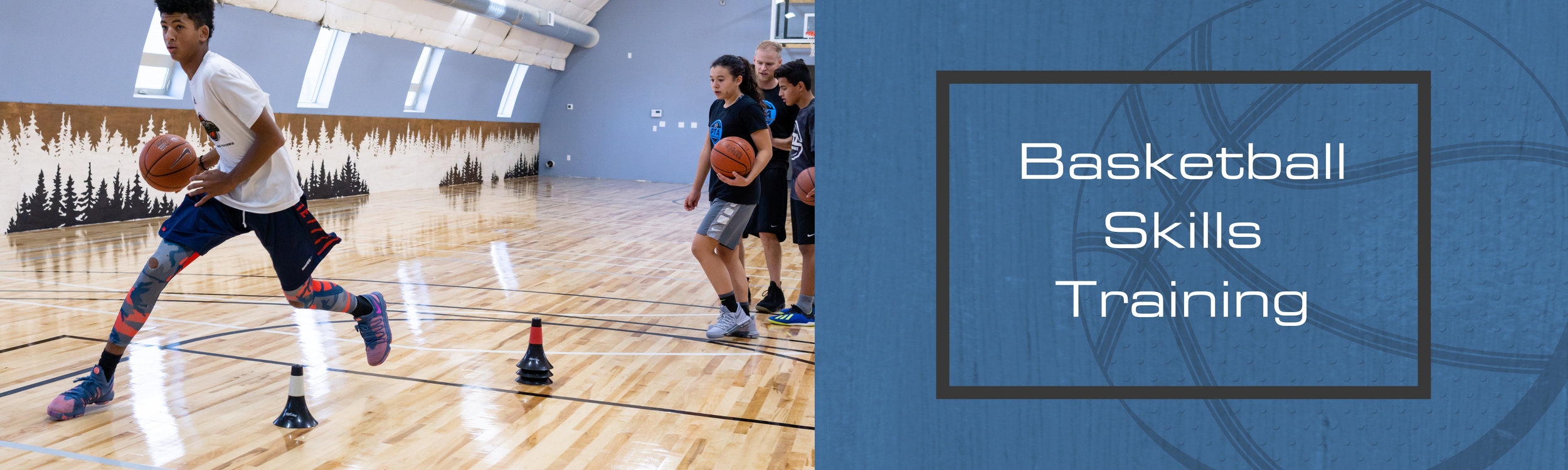 Website Pricing Banner- Basketball Skills Training.jpg