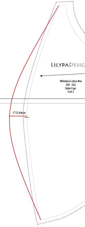 Lotus_move_vertical_seam2.JPG