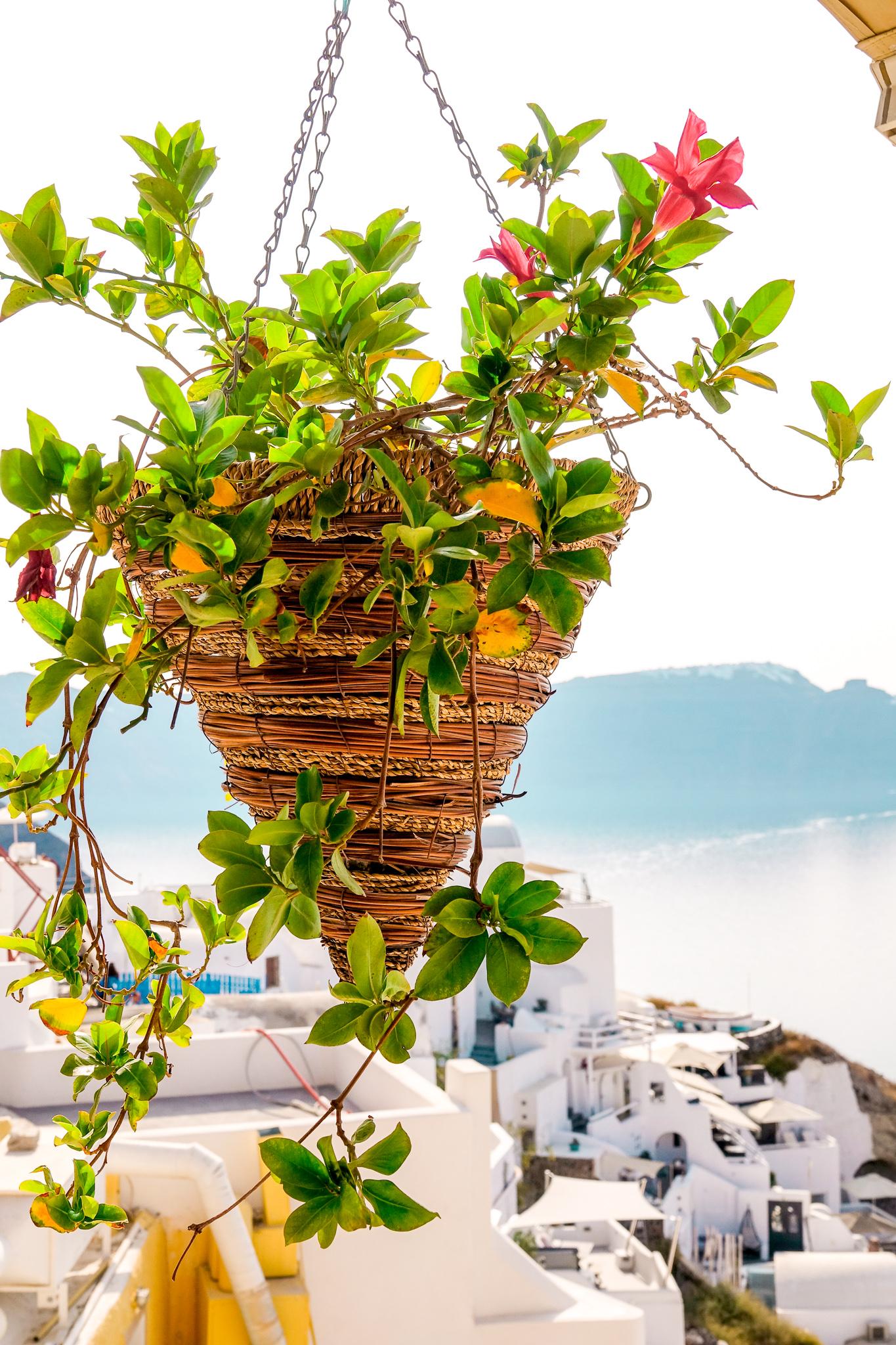 Santorini18.jpg