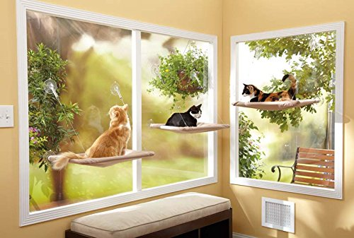 WHAT?! A cat window hammock?? - Yeah… it's pretty cool. My cats sit in these all morning and I have to personally get them up out of it when it's time to feed them. LAZY CATS…