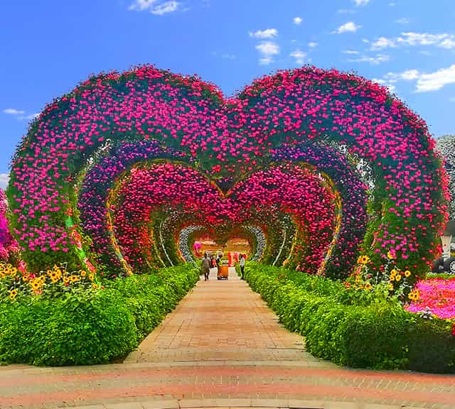 Photo via Dubai Miracle Garden