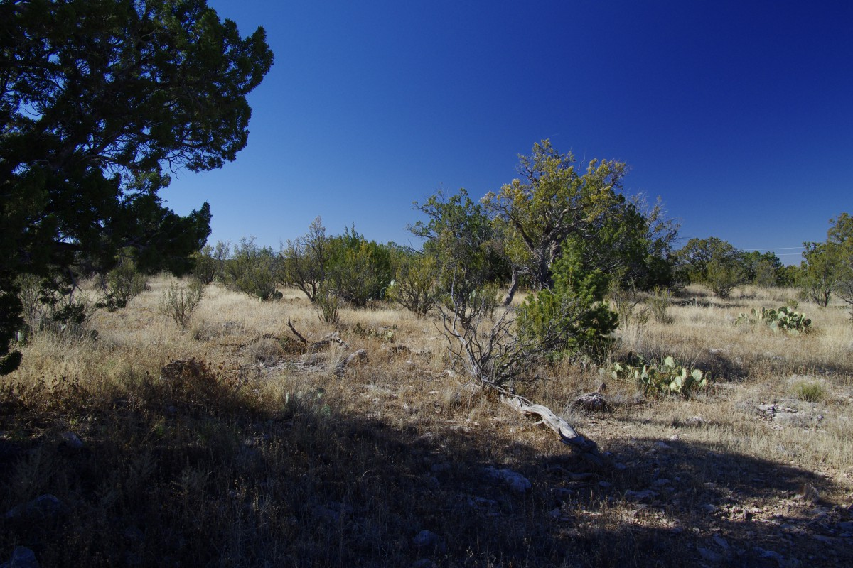 Arizona, Yavapai CountyGreat Access and Buildable Lots - 10.77 AcresCash Price: $10,900Financing not available for this property.