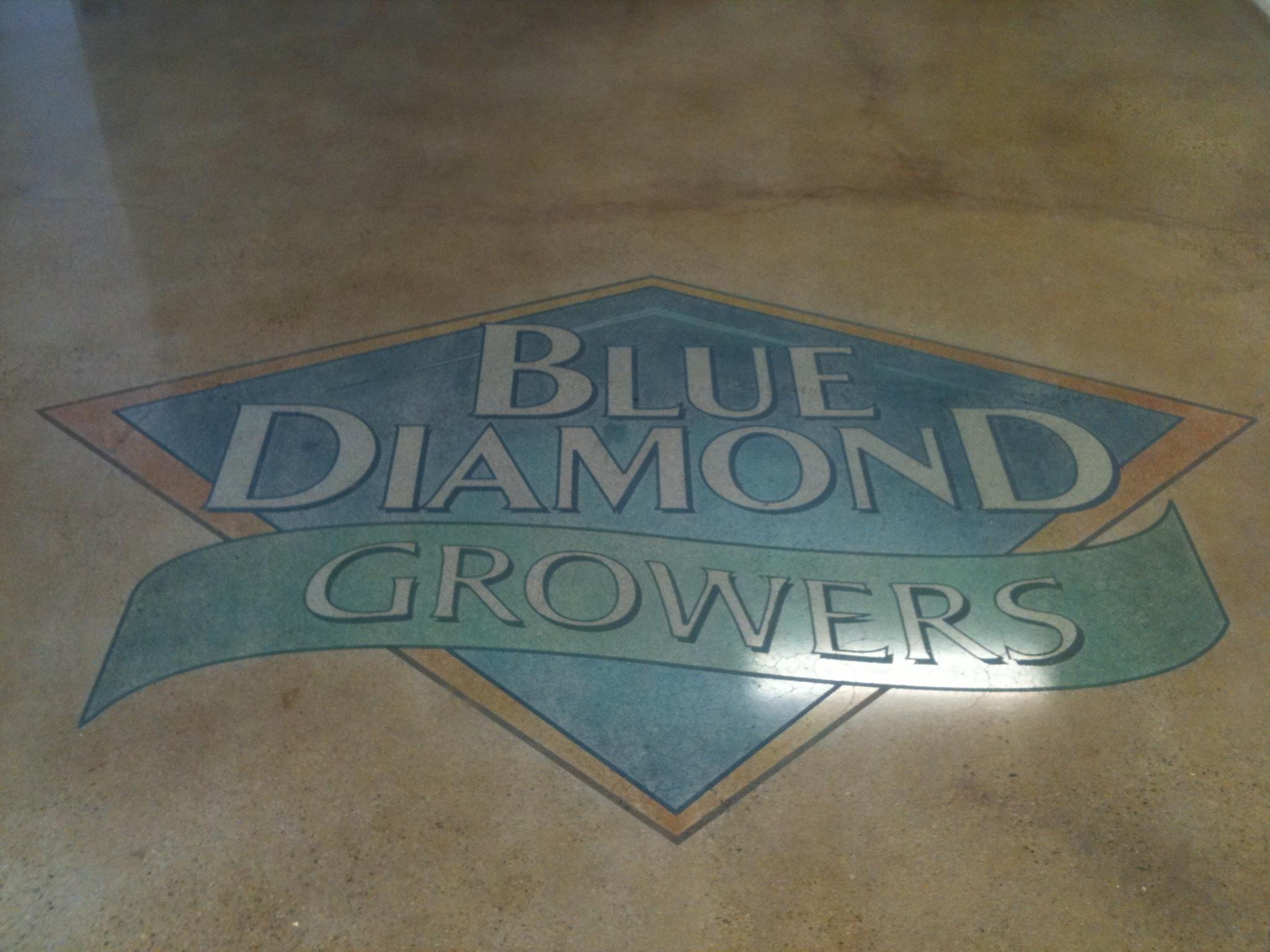 Blue Diamond Polished Floor. Salida,Ca.JPG
