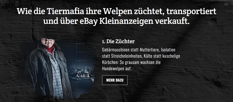 """Auszug aus der Kampagnenwebsite """"DANKE EBAY"""" von VIER PFOTEN"""
