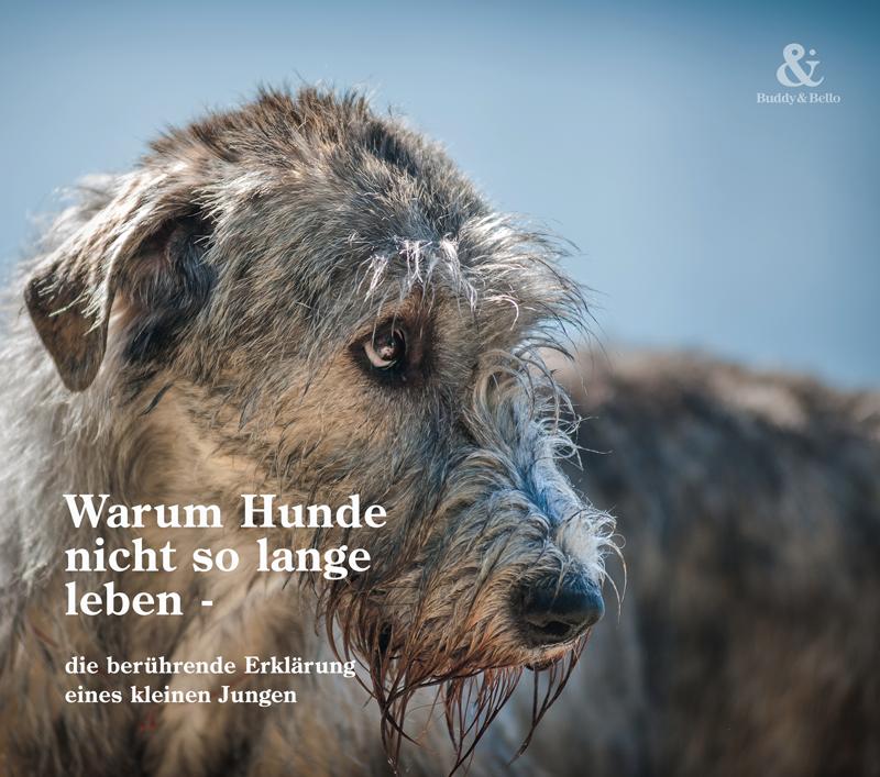buddyandbello_inspiration_hunde_leben.png