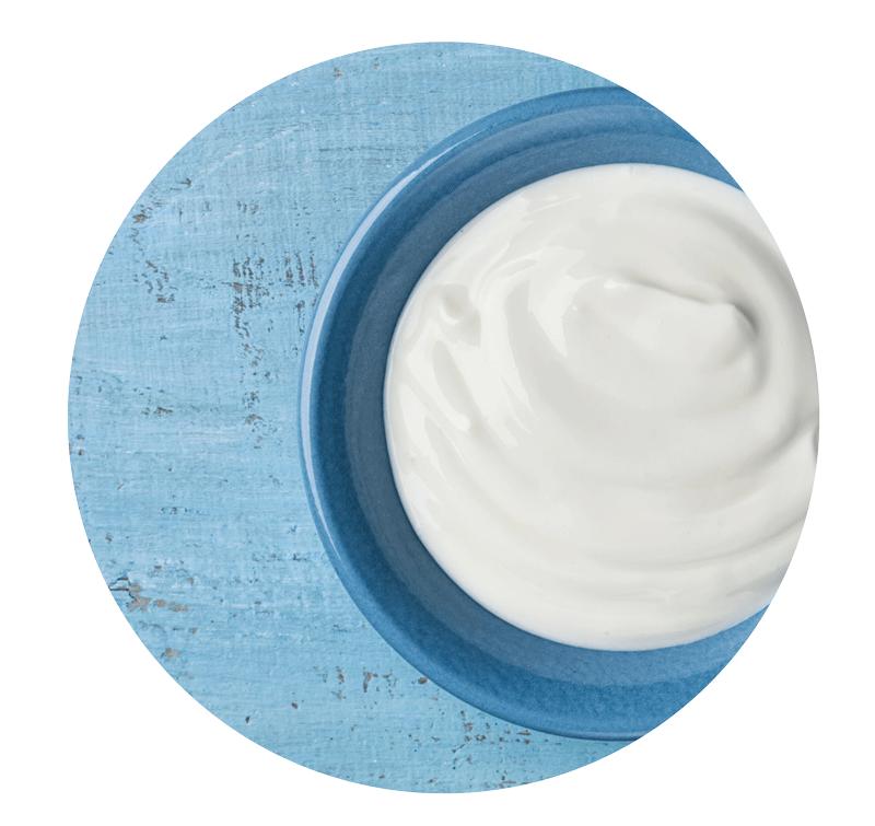 PRObiotika - sind vielfach bekannt aus Joghurt und tun dem Hundedarm gut