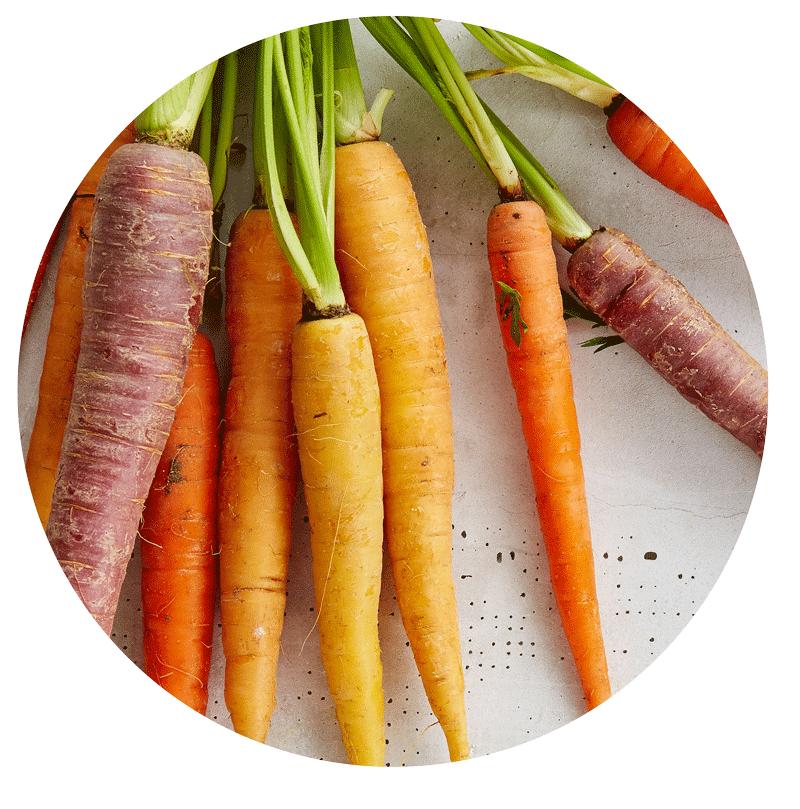 Frisches Gemüse - enthält viele Faserstoffe, die für die Darmgesundheit förderlich sind