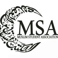 MSA image.jpg