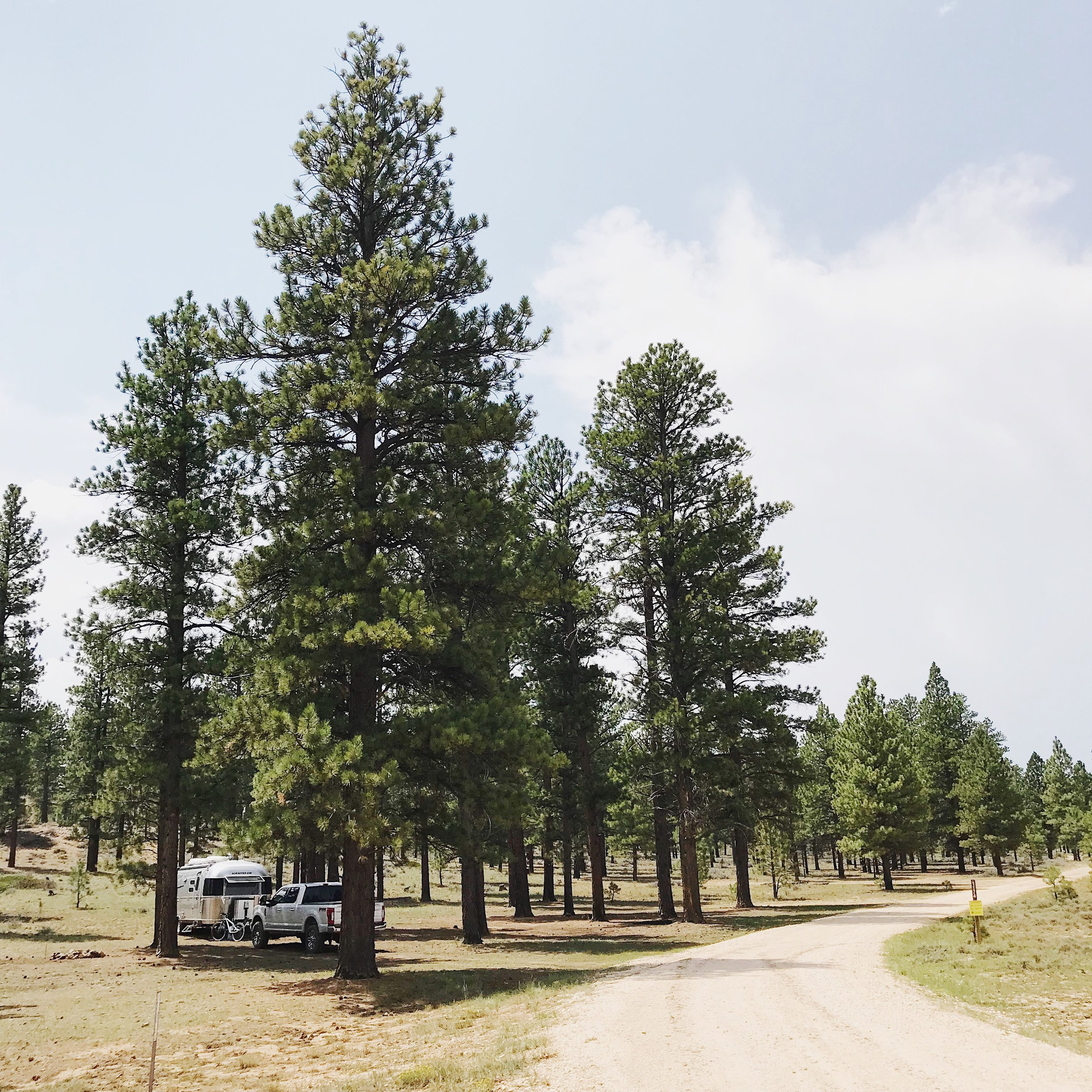 George's Gift - Free dispersed camping