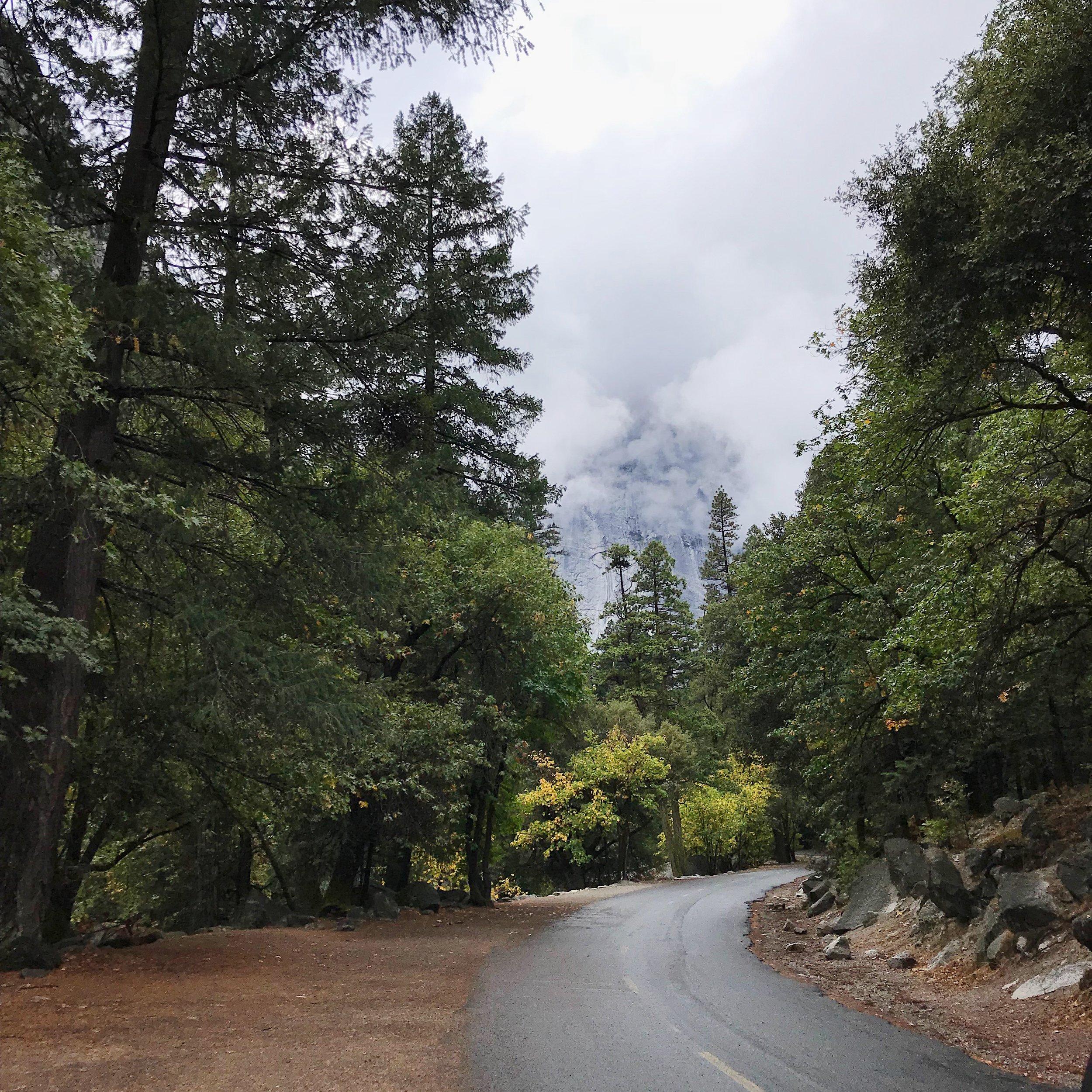 Trail-to-Yosemite-Village-2.JPG