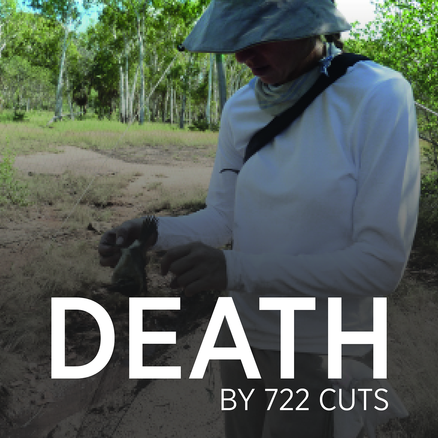 death by 722 cuts square 2.jpg