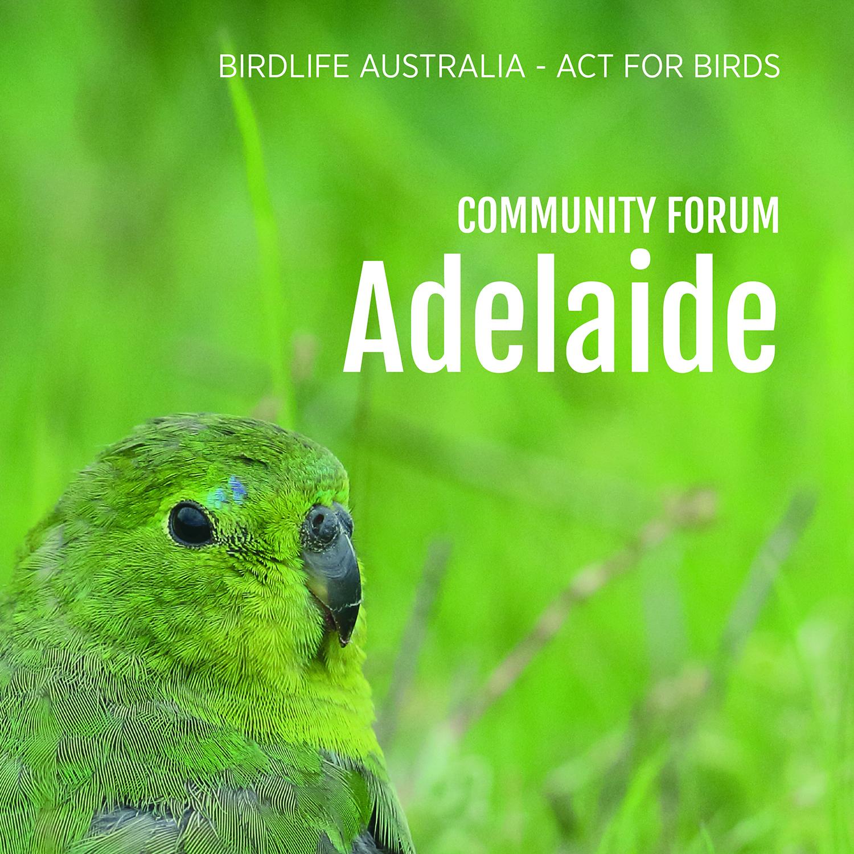 Community forum - Adelaide.jpg