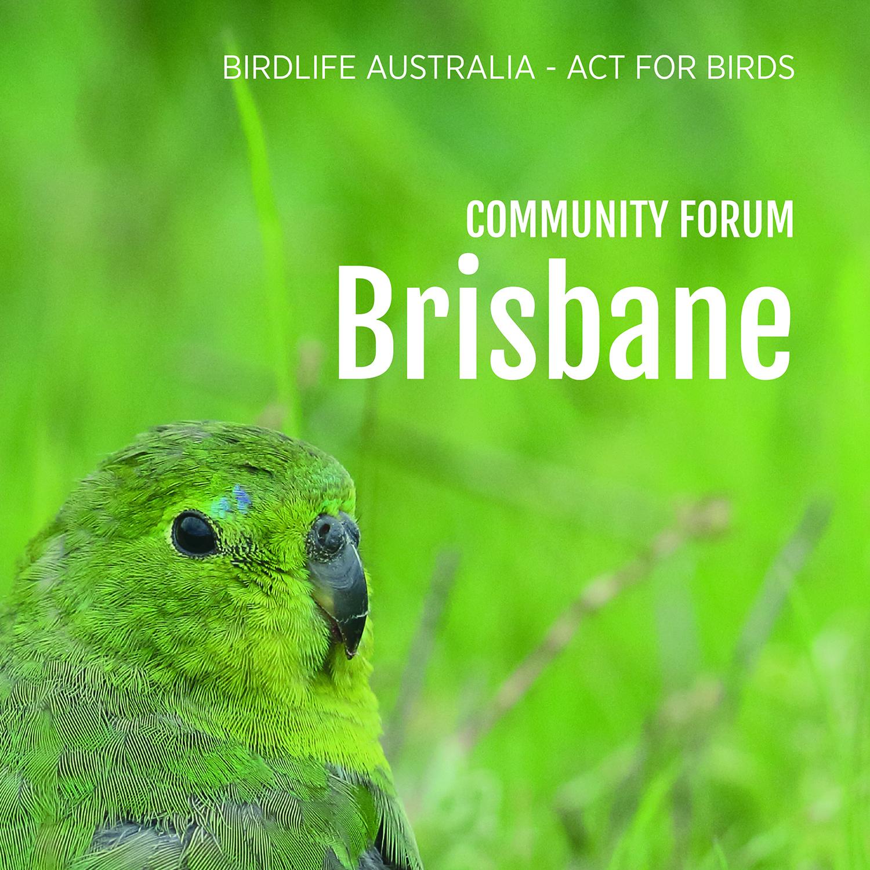 Community forum - Brisbane.jpg