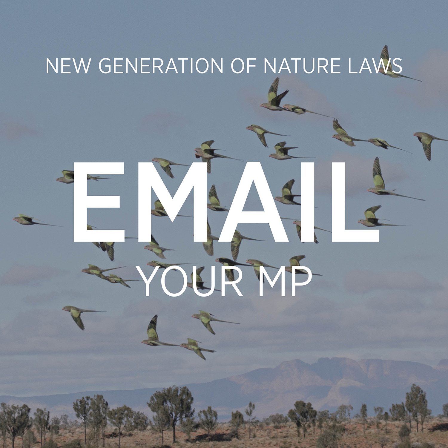 Email your Member of Parliament asking them to commit to a new system of environmental laws