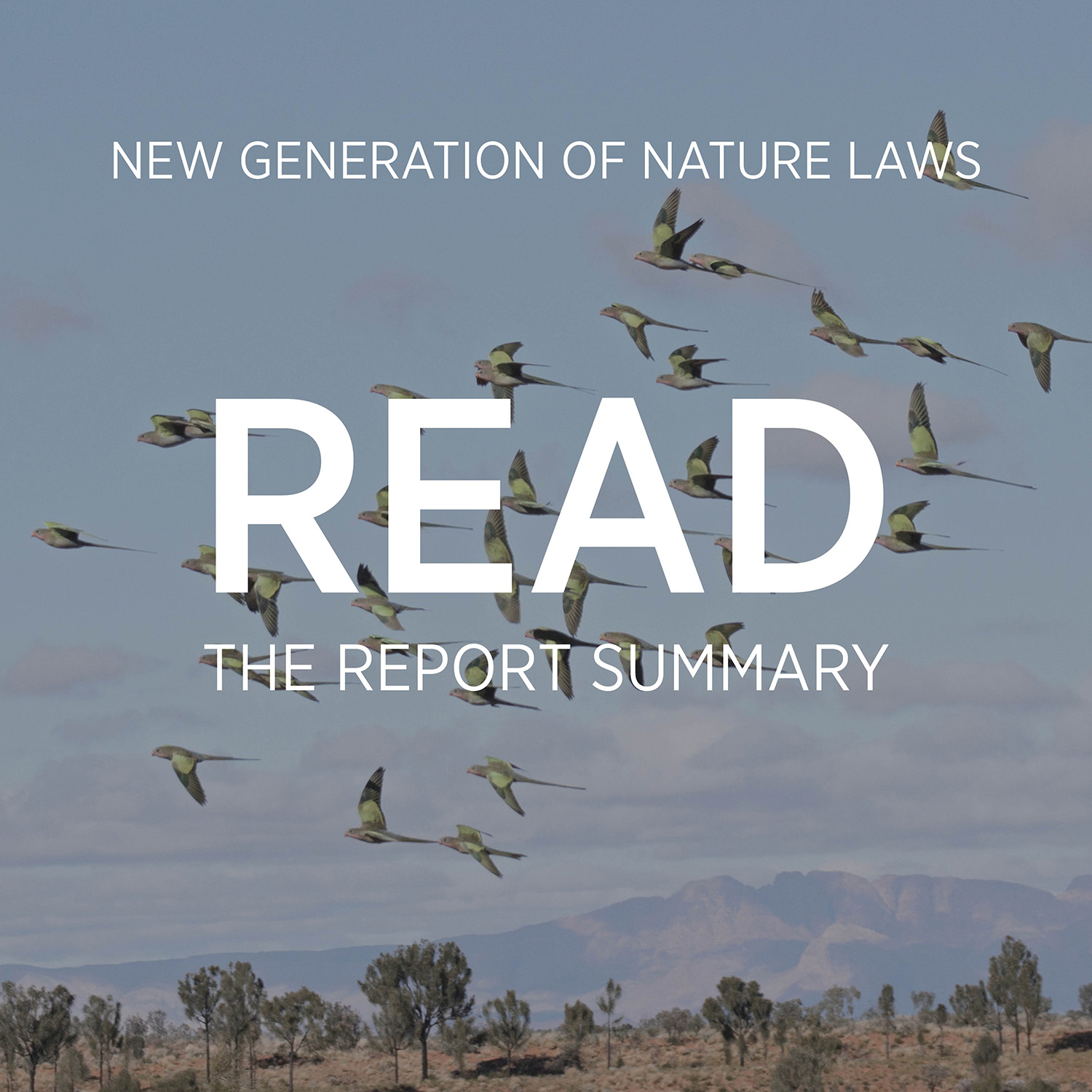 This summary gives you a snapshot of our report, including the key issues and weaknesses of Australia's environment laws and our recommendations on how we can fix them.