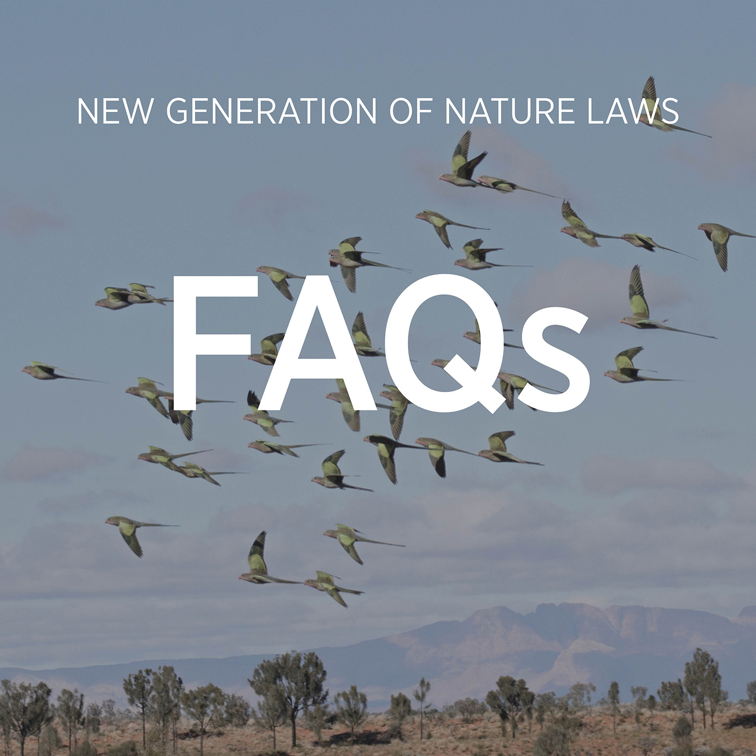 The new nature laws campaign is big and ambitious. We want everyone to feel confident talking about it. We'll regularly update this document to answer common questions.