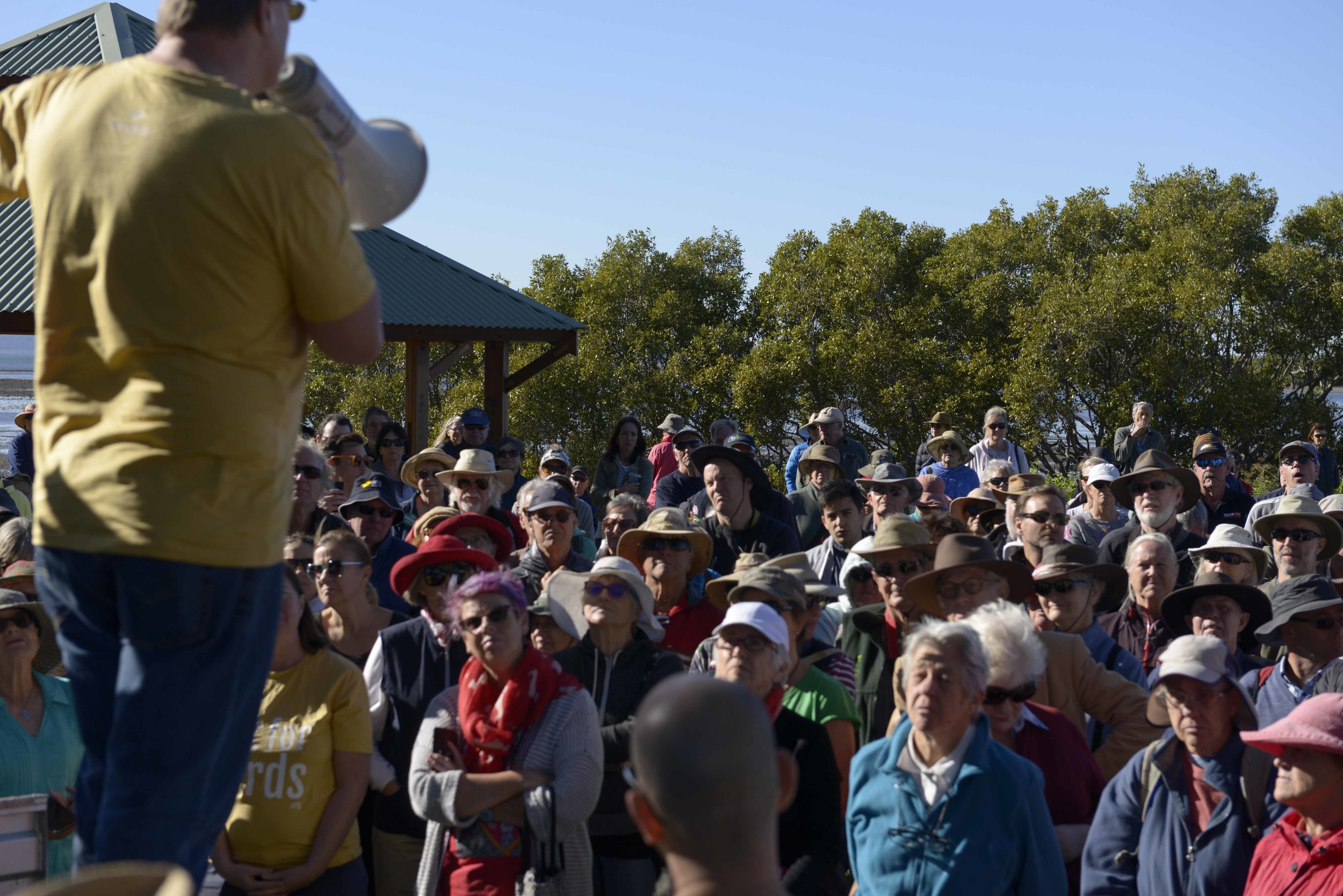 "Rob Clemens updates the crowd on the Eastern Curlew and it's 20,000 kms round trip from Russia, ""they come to Toondah Harbour to fatten up before their flight all the way back"" by Fiona Blandford"