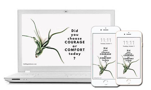 Did you choose courage or comfort today?