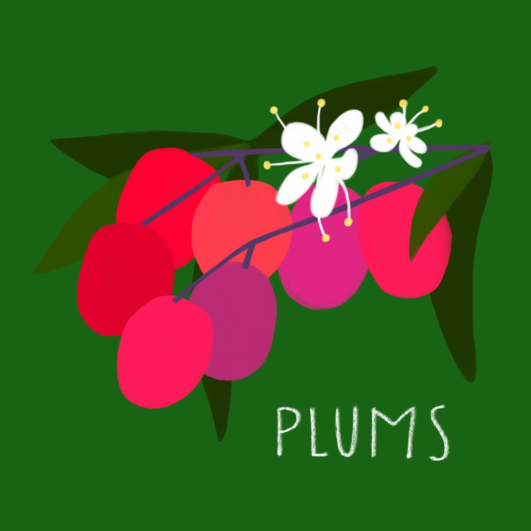 39_-_Plums.jpg