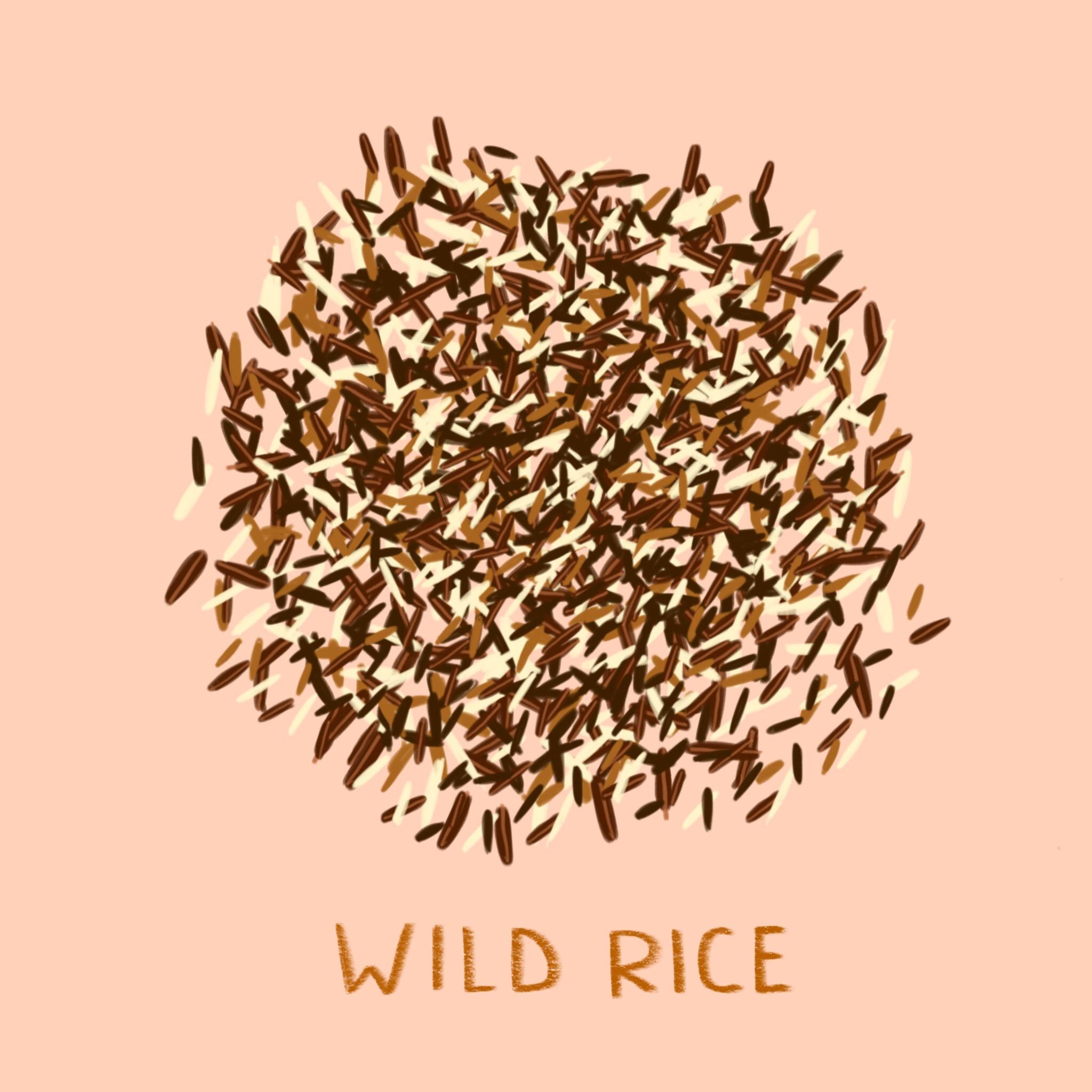 61_-_Wild_Rice.jpg