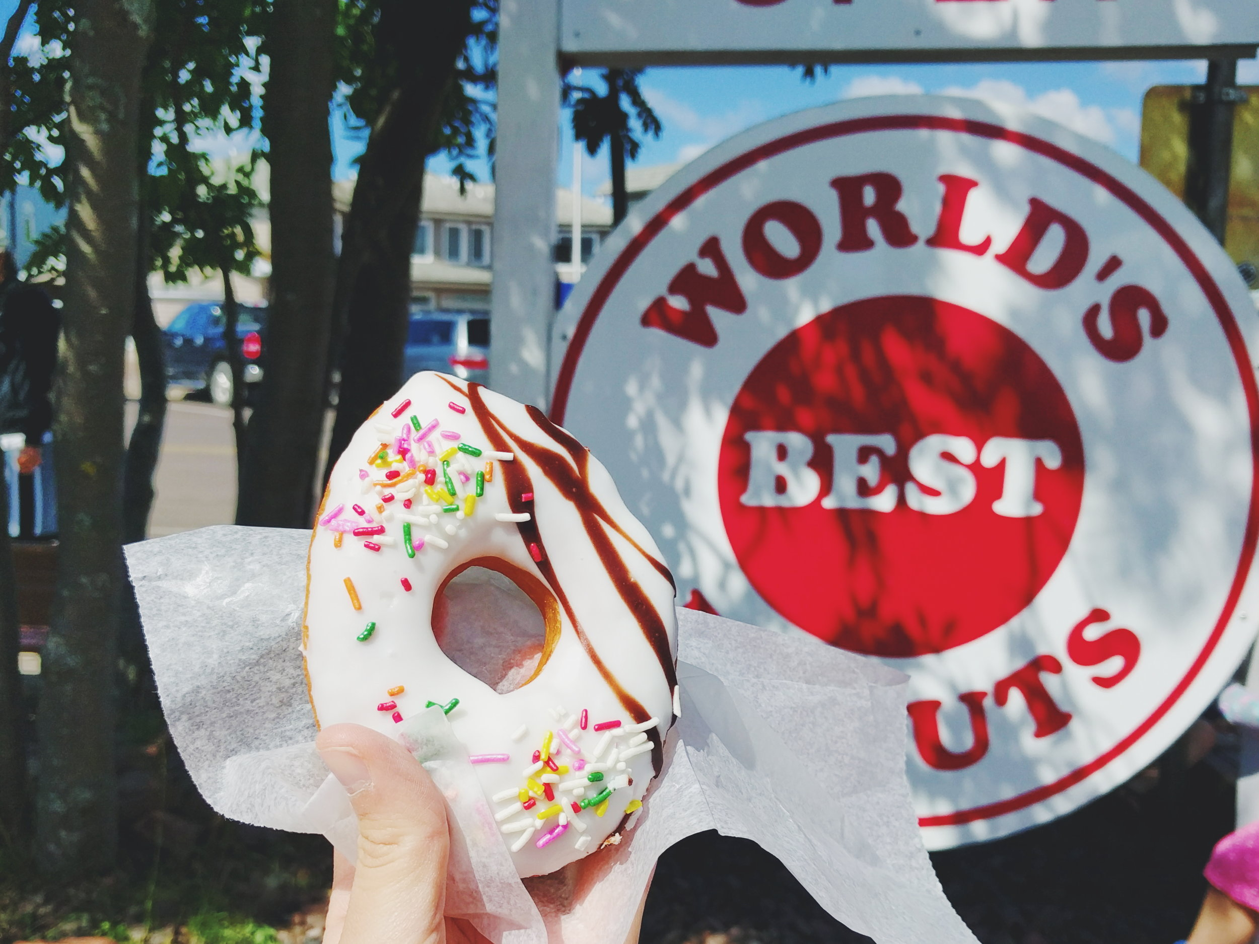 Grand Marais Minnesota - World's Best Donuts