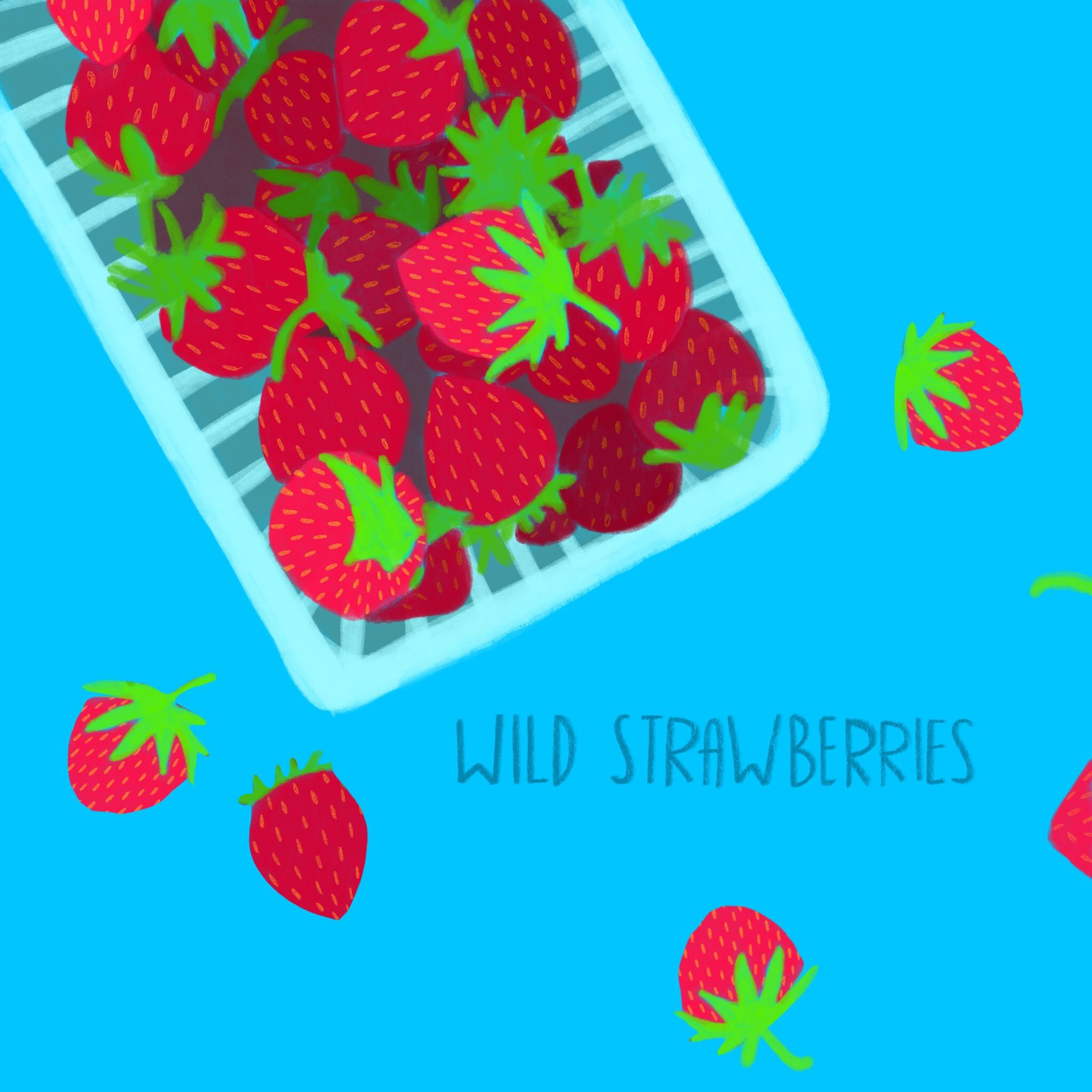 1_-_Wild_Strawberries.jpg
