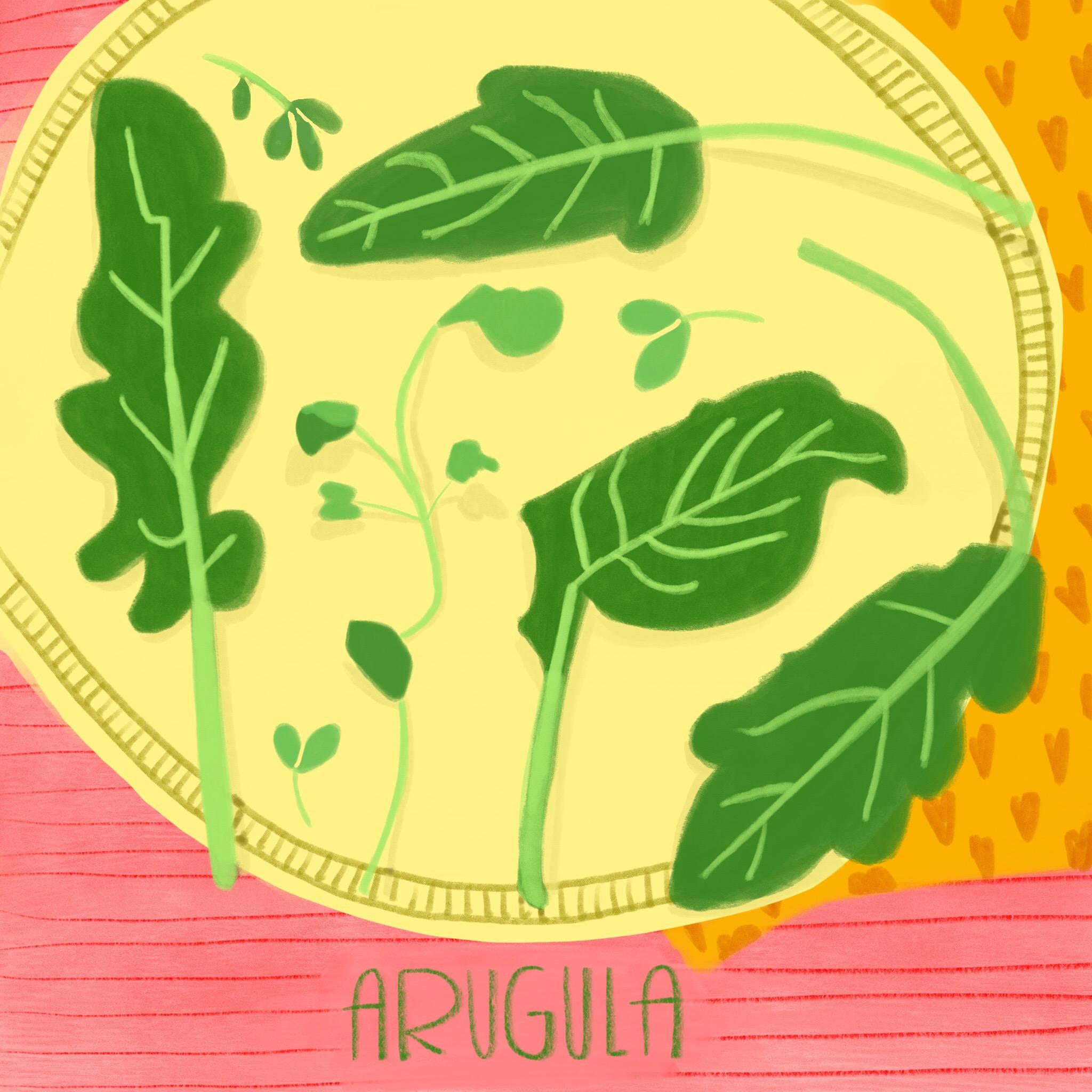 3_-_Arugula.jpg