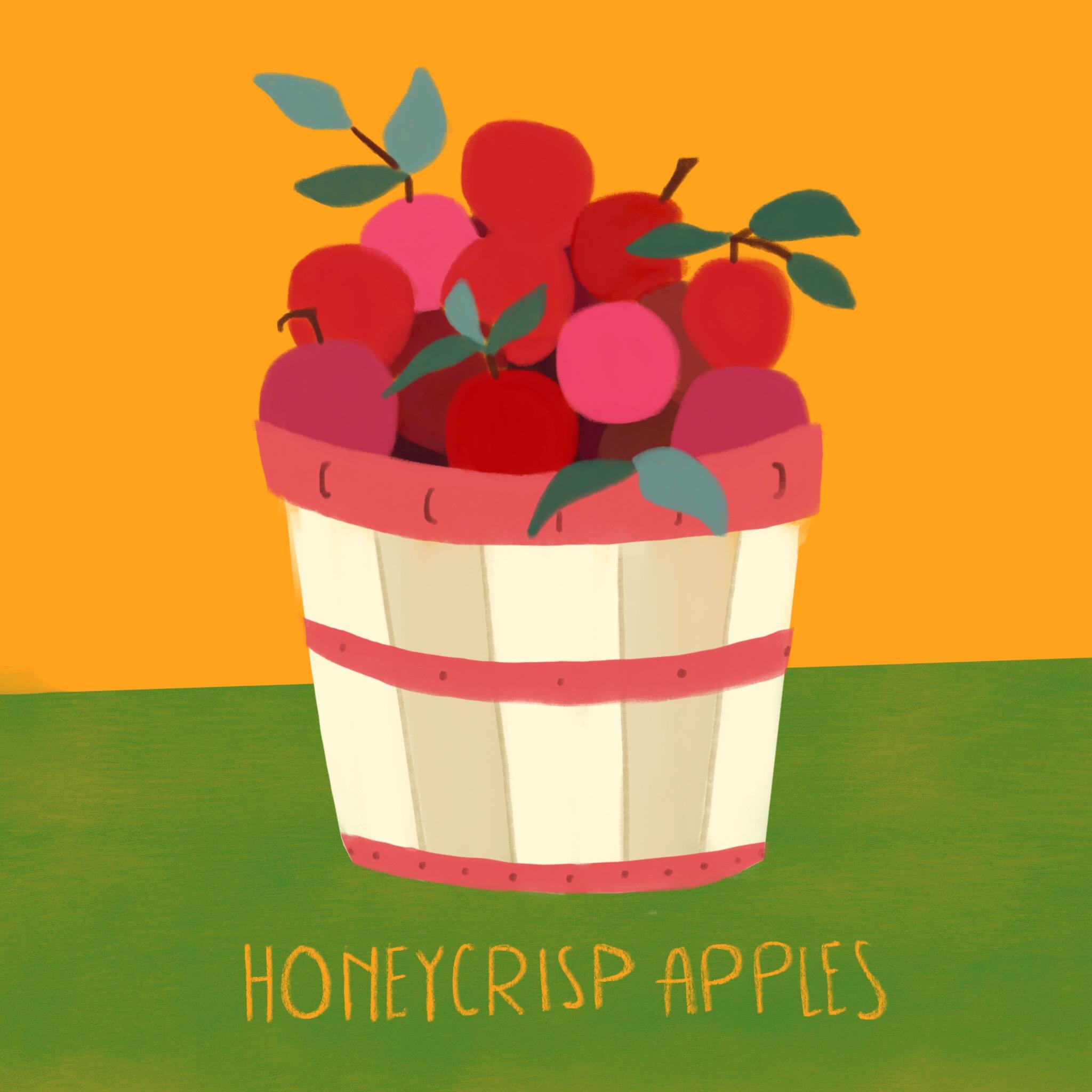 6_-_Honeycrisp_Apple.jpg