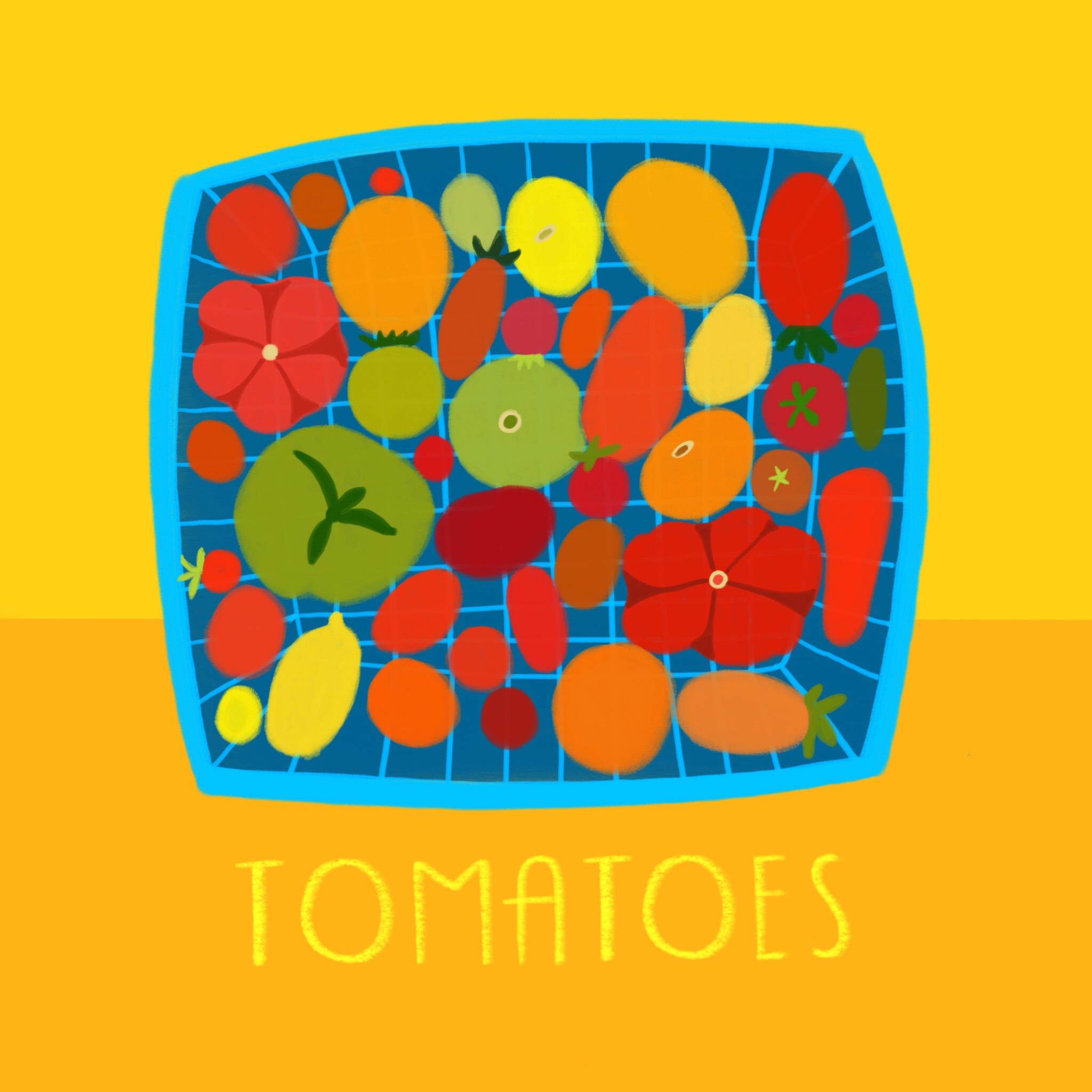 21_-_Tomatoes (1).jpg