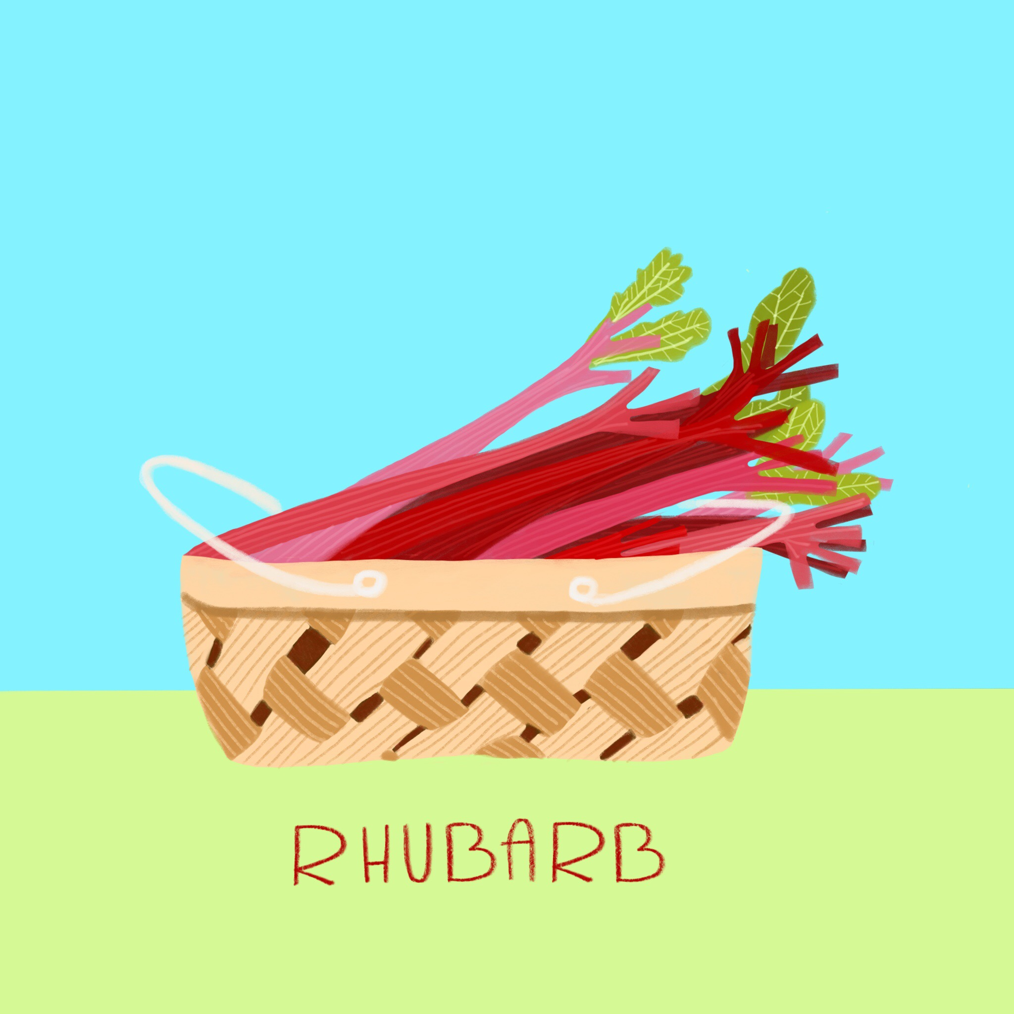28_-_Rhubarb.jpg