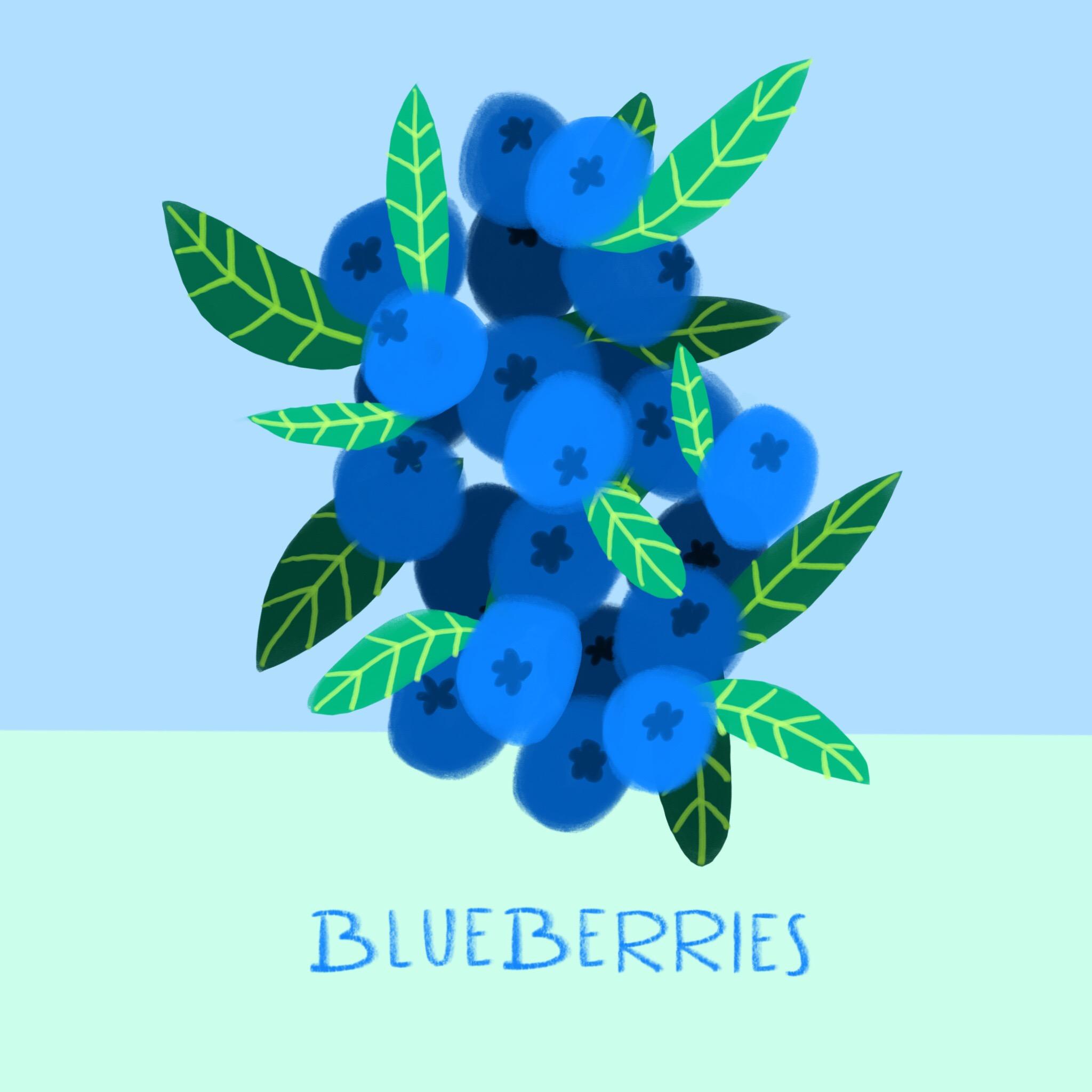 36_-_Blueberries.jpg