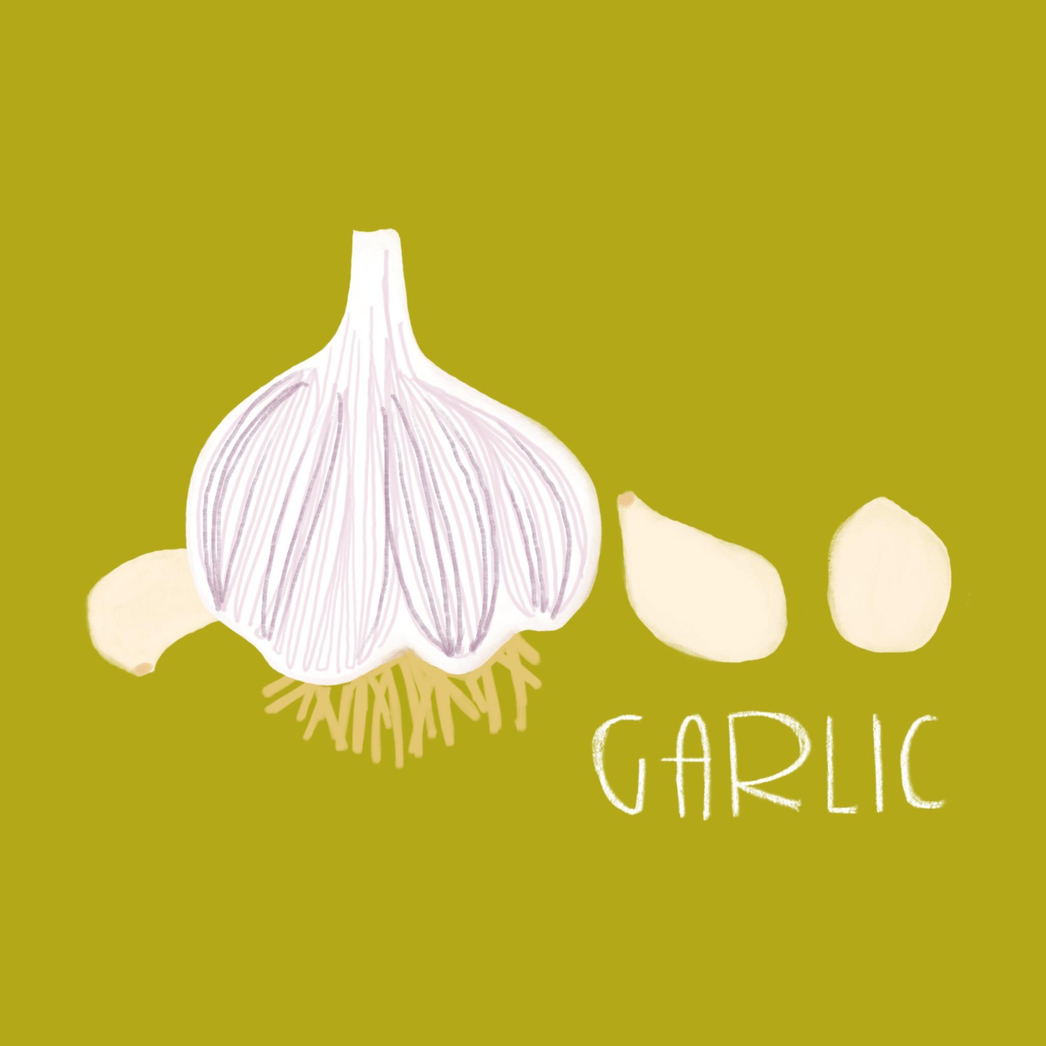 41_-_Garlic.jpg