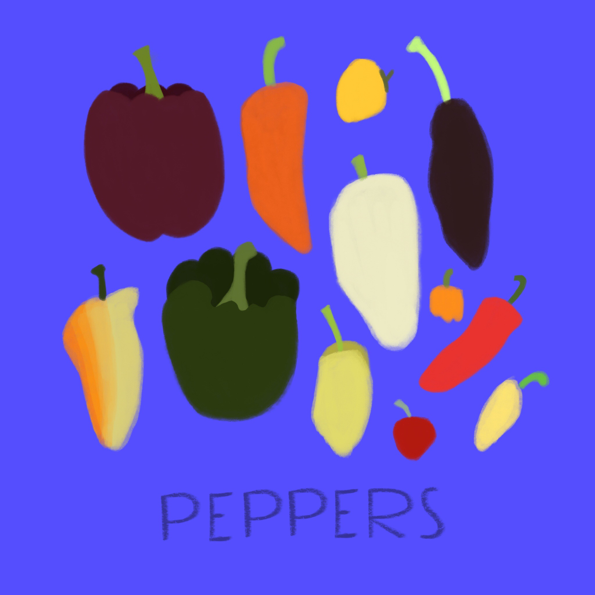 46_-_Bell_Peppers.jpg