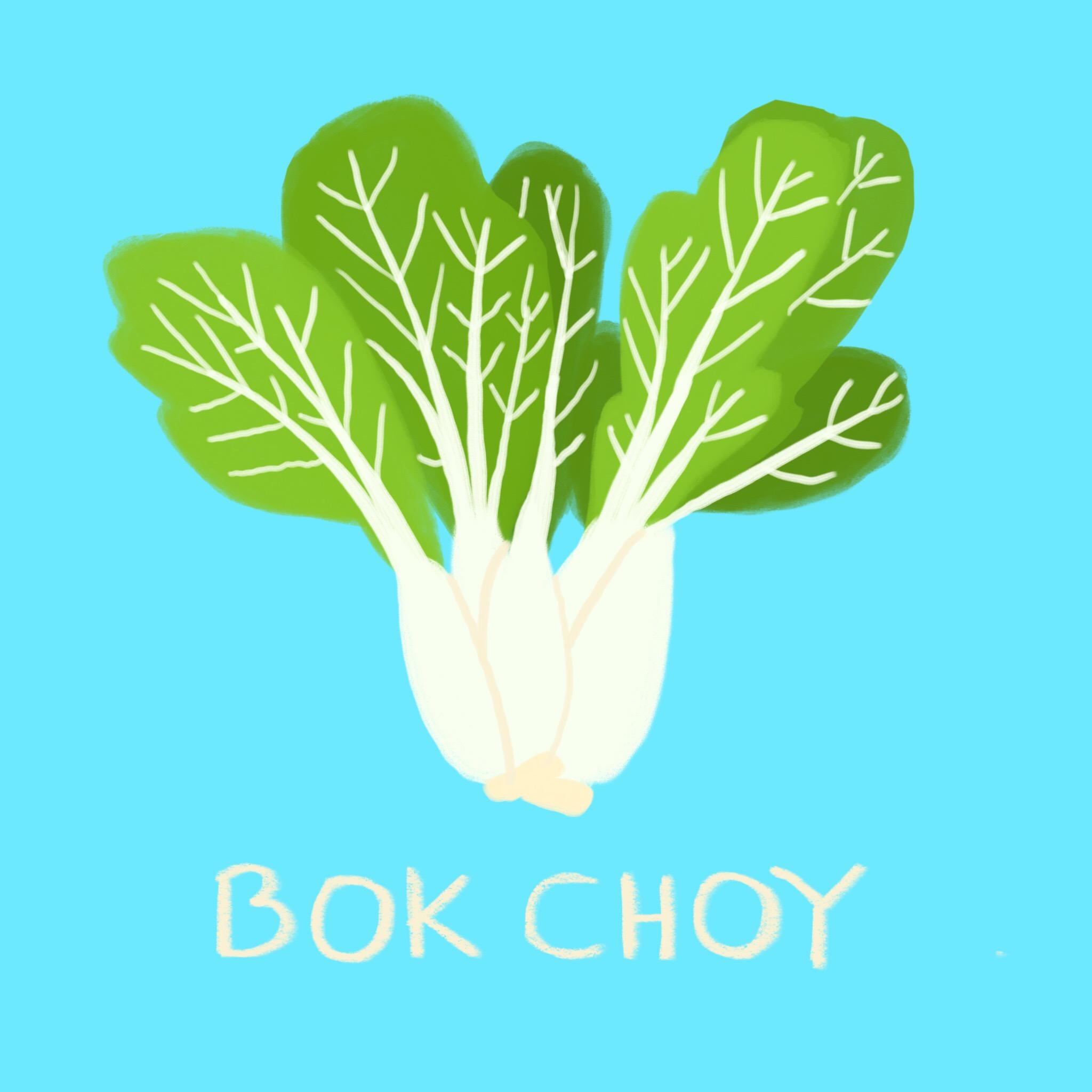 67_-_Bok_Choy.jpg