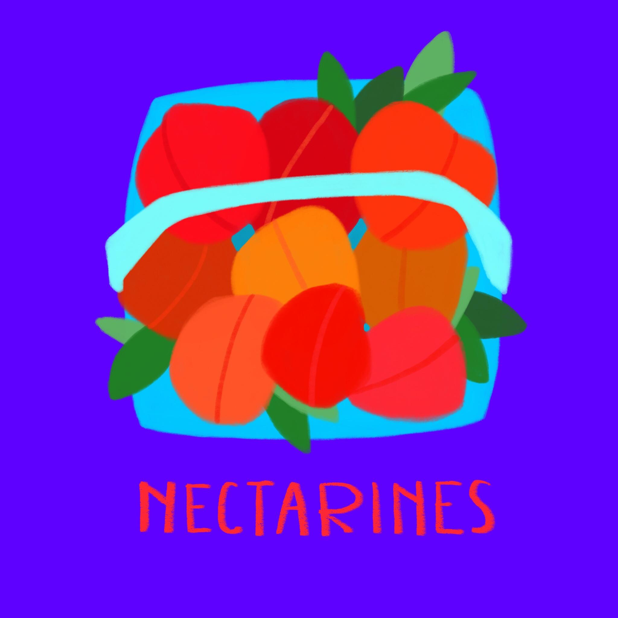 79_-_Nectarines.jpg