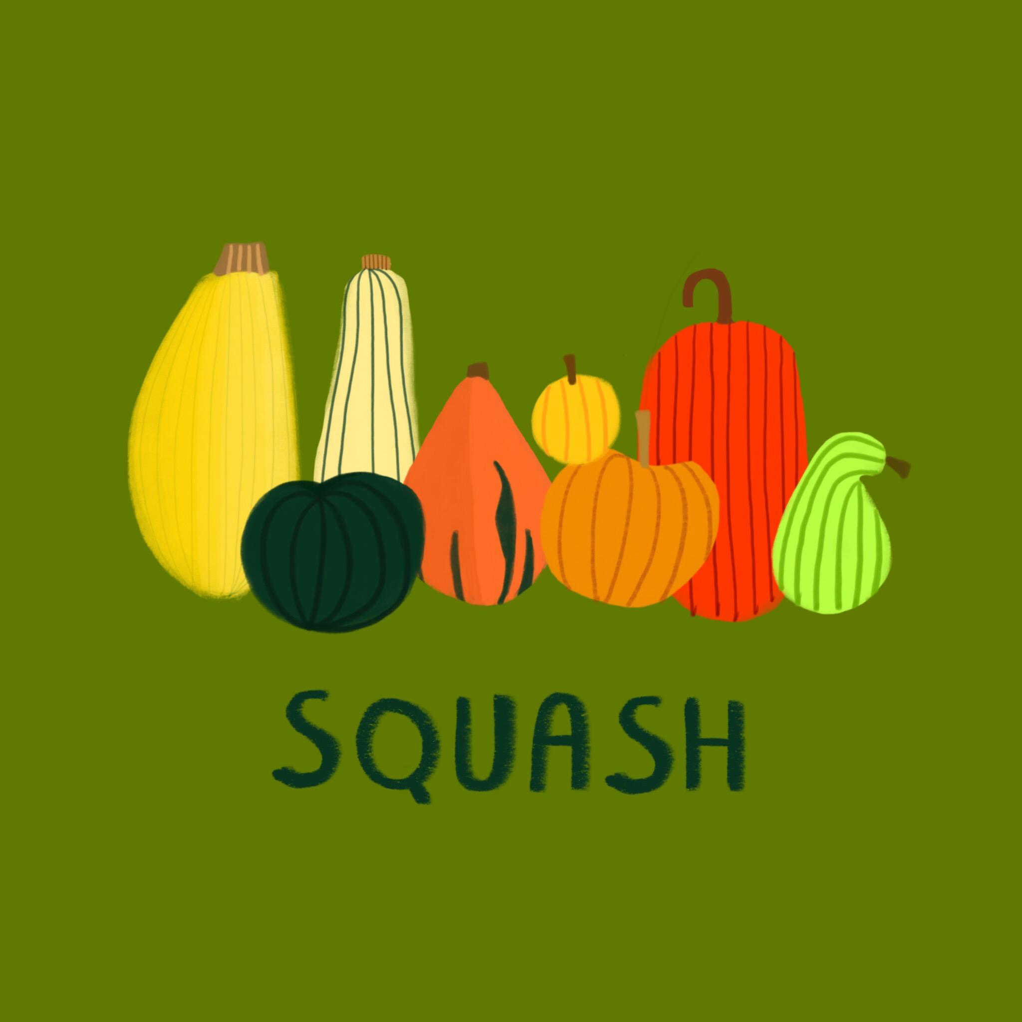 87_-_Winter_Squash.jpg