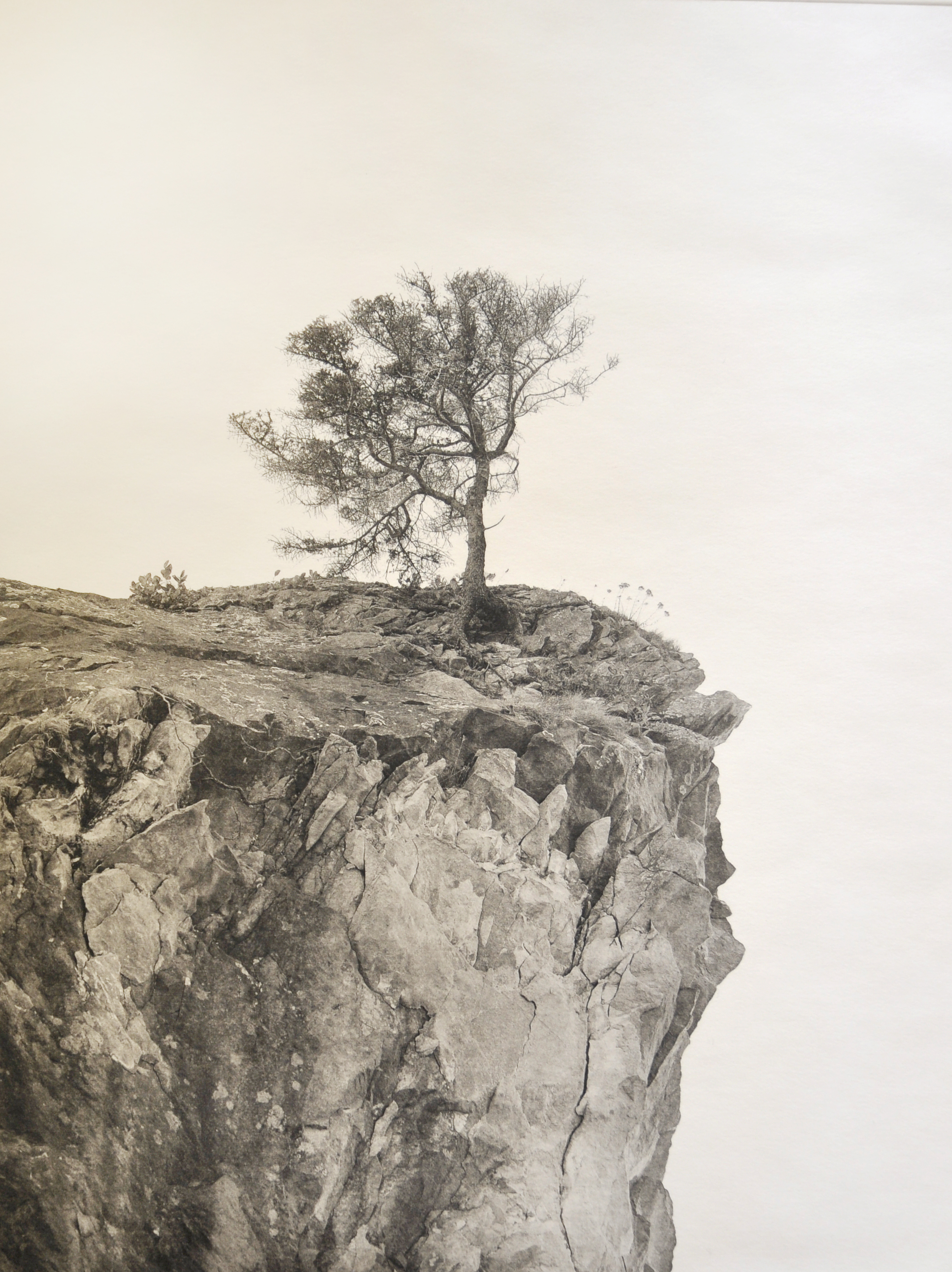 Mark McKnight,  Against the Wind , photograph.