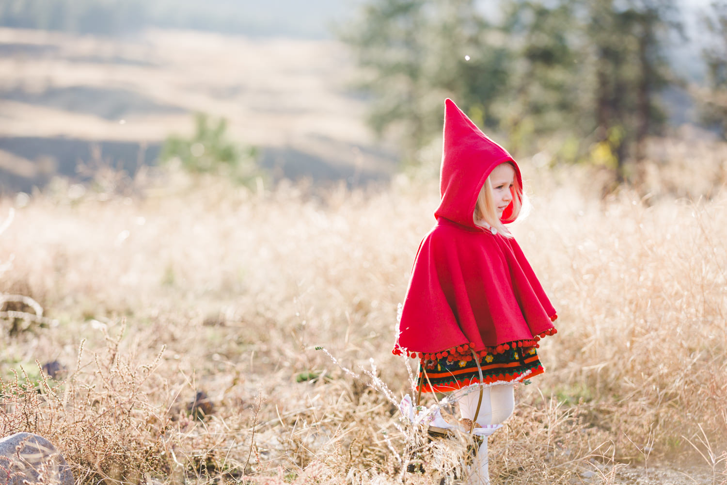 kelowna-halloween-family-photoshoot-little-red-riding-hood-photography-okanagan-halloween-family-photographers-julie-dorge (7 of 27).jpg