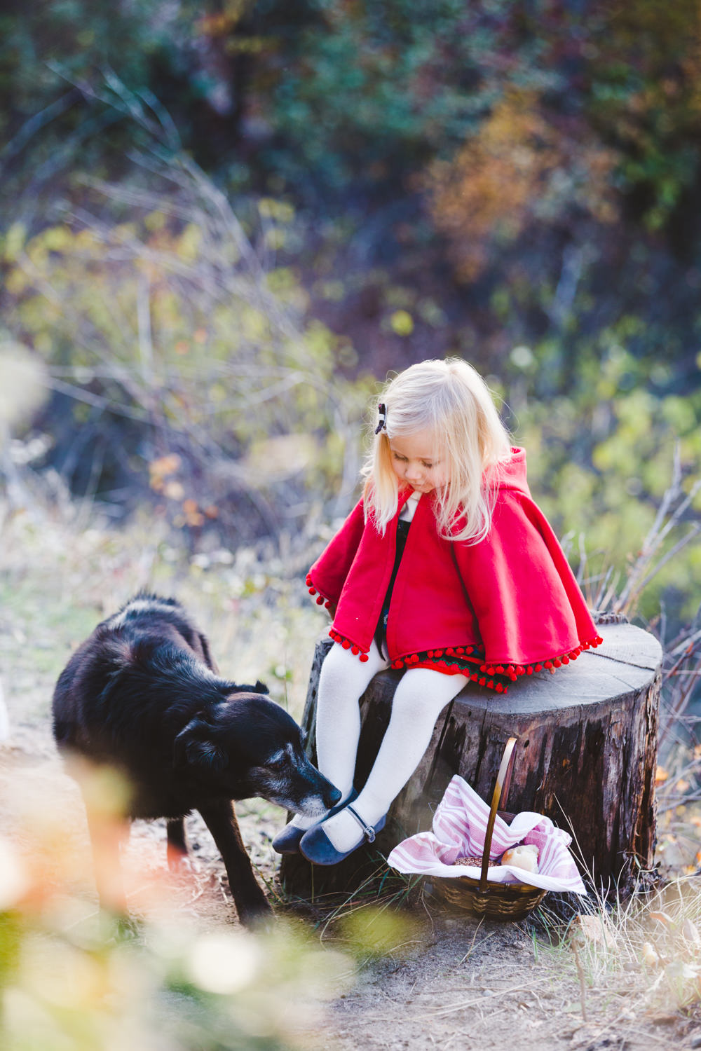 kelowna-halloween-family-photoshoot-little-red-riding-hood-photography-okanagan-halloween-family-photographers-julie-dorge (21 of 27).jpg